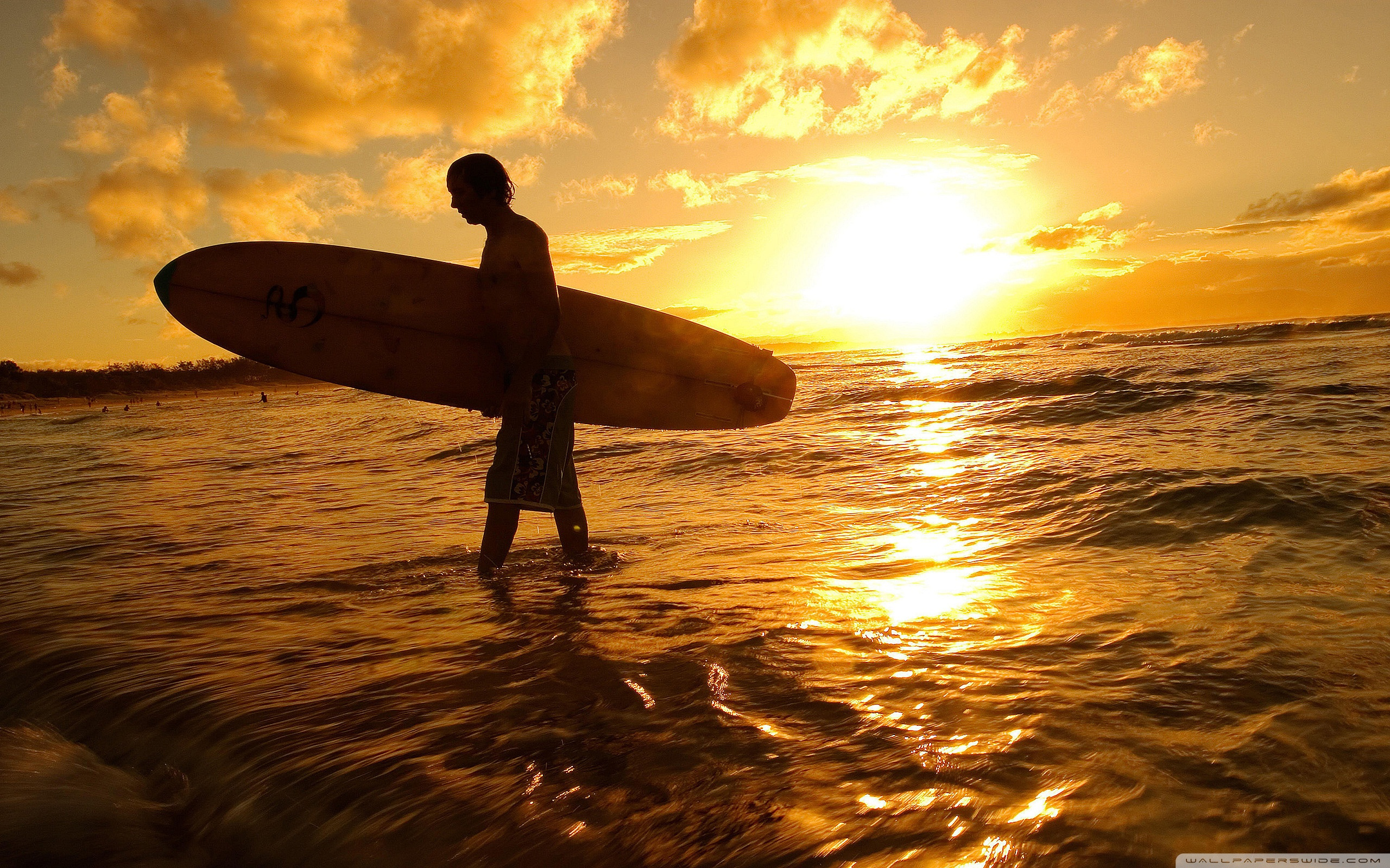 Surfer At Sunset ❤ 4K HD Desktop Wallpaper for 4K Ultra HD TV ...
