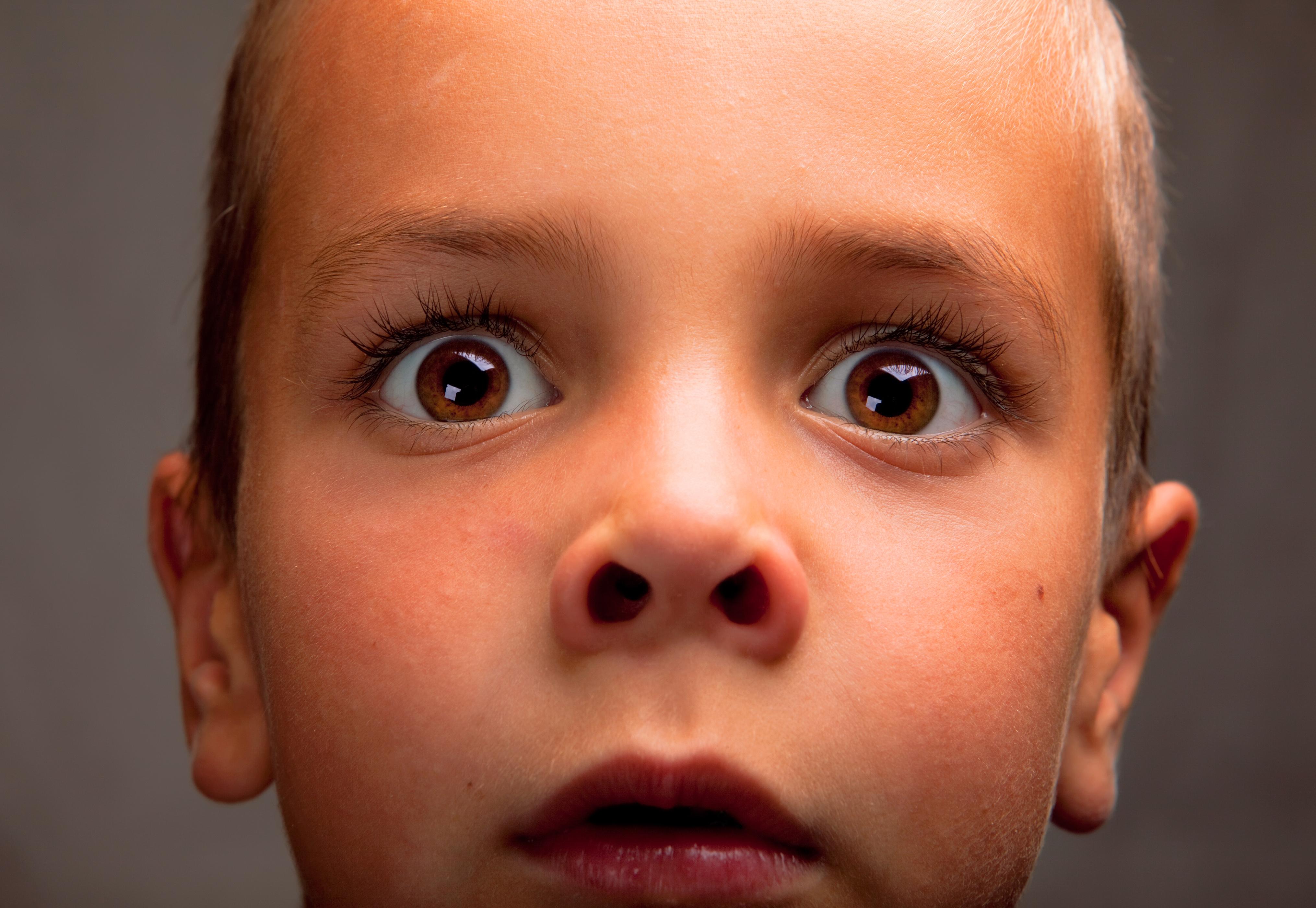 free photo: surprised boy - looking, one, surprised - free download