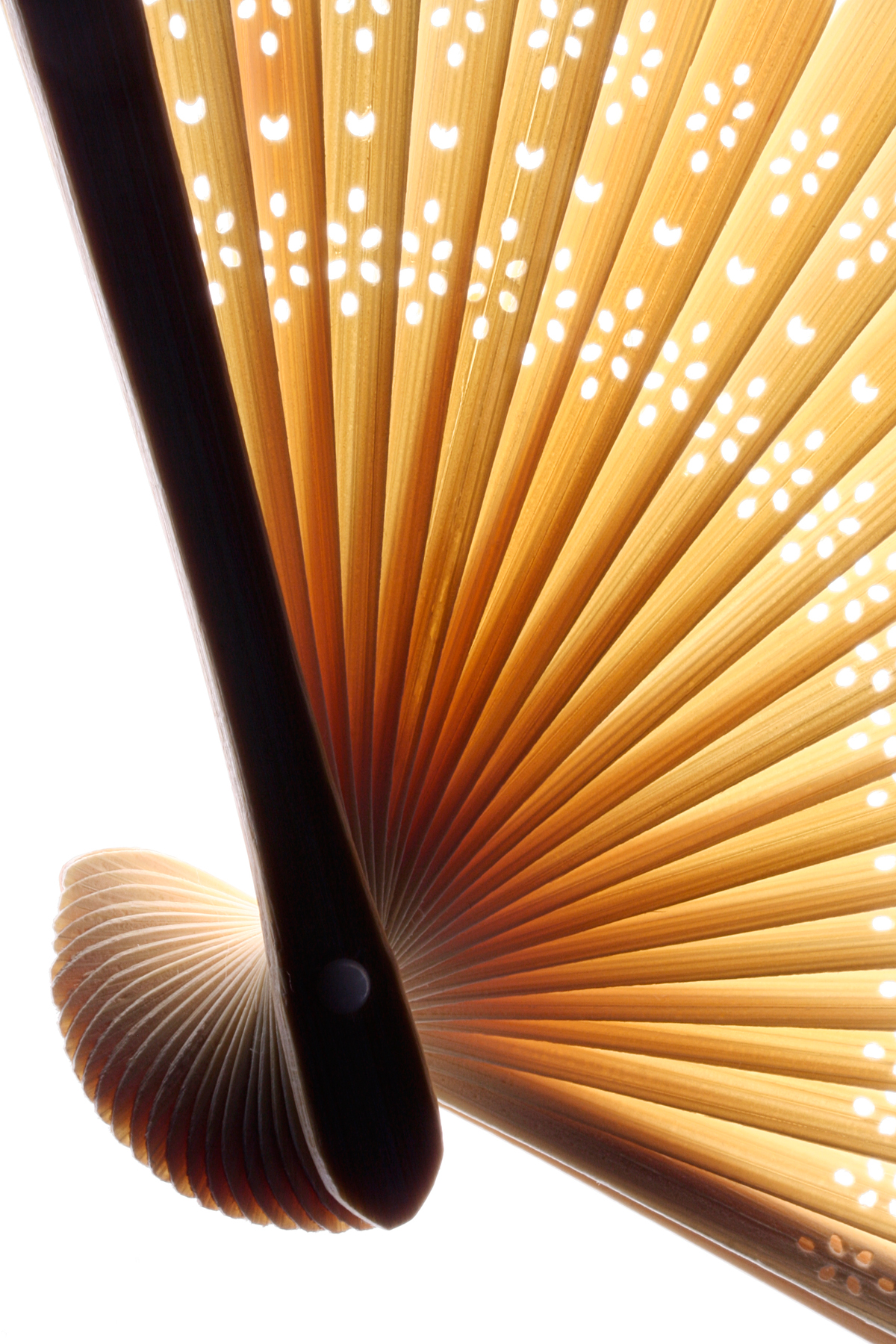 Sweeping Asian Fan, Abstract, Picture, Linear, Lines, HQ Photo