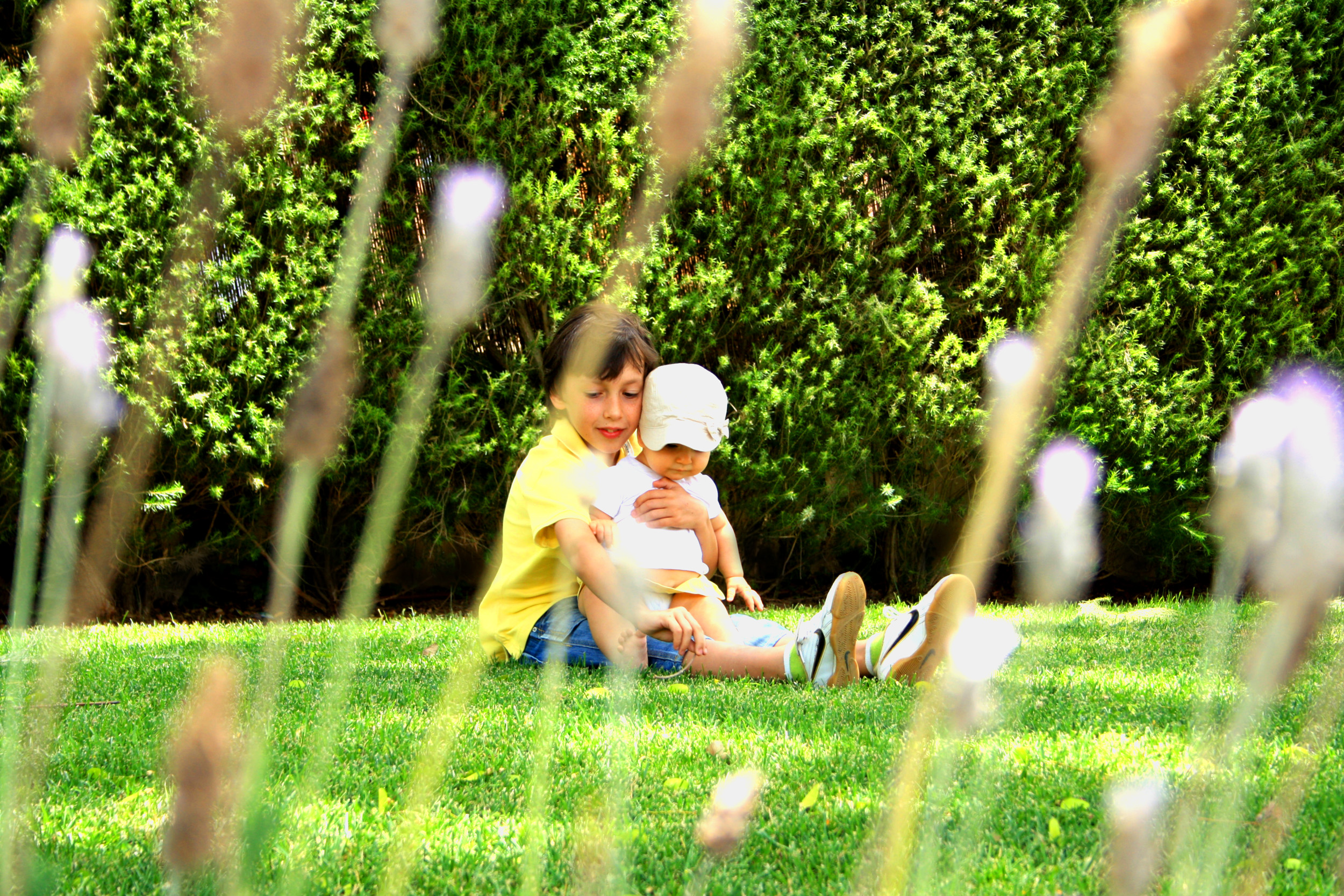 Sweet older brother hugging his young sister on the grass photo