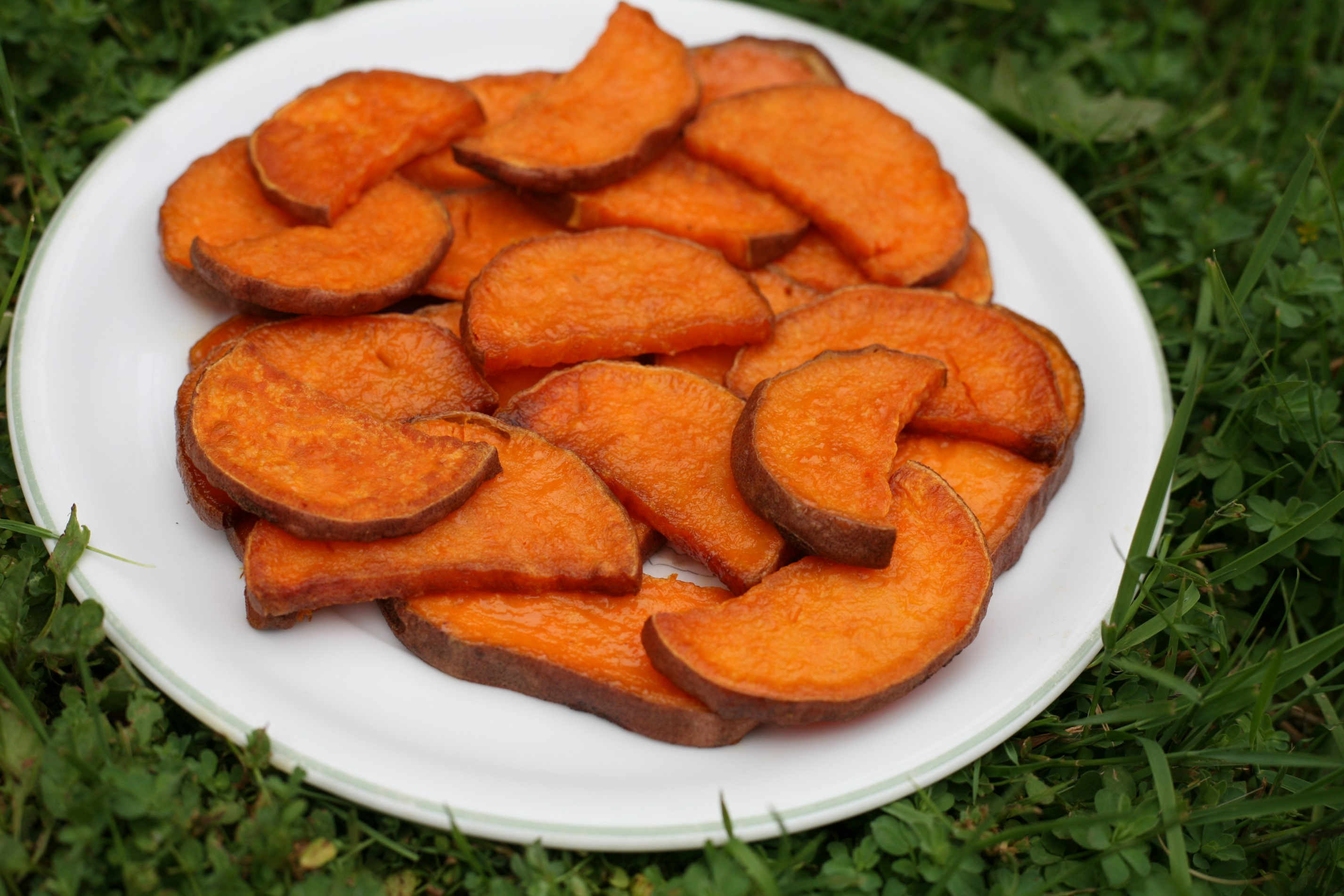baked sweet potato slices - WoolyMossRoots