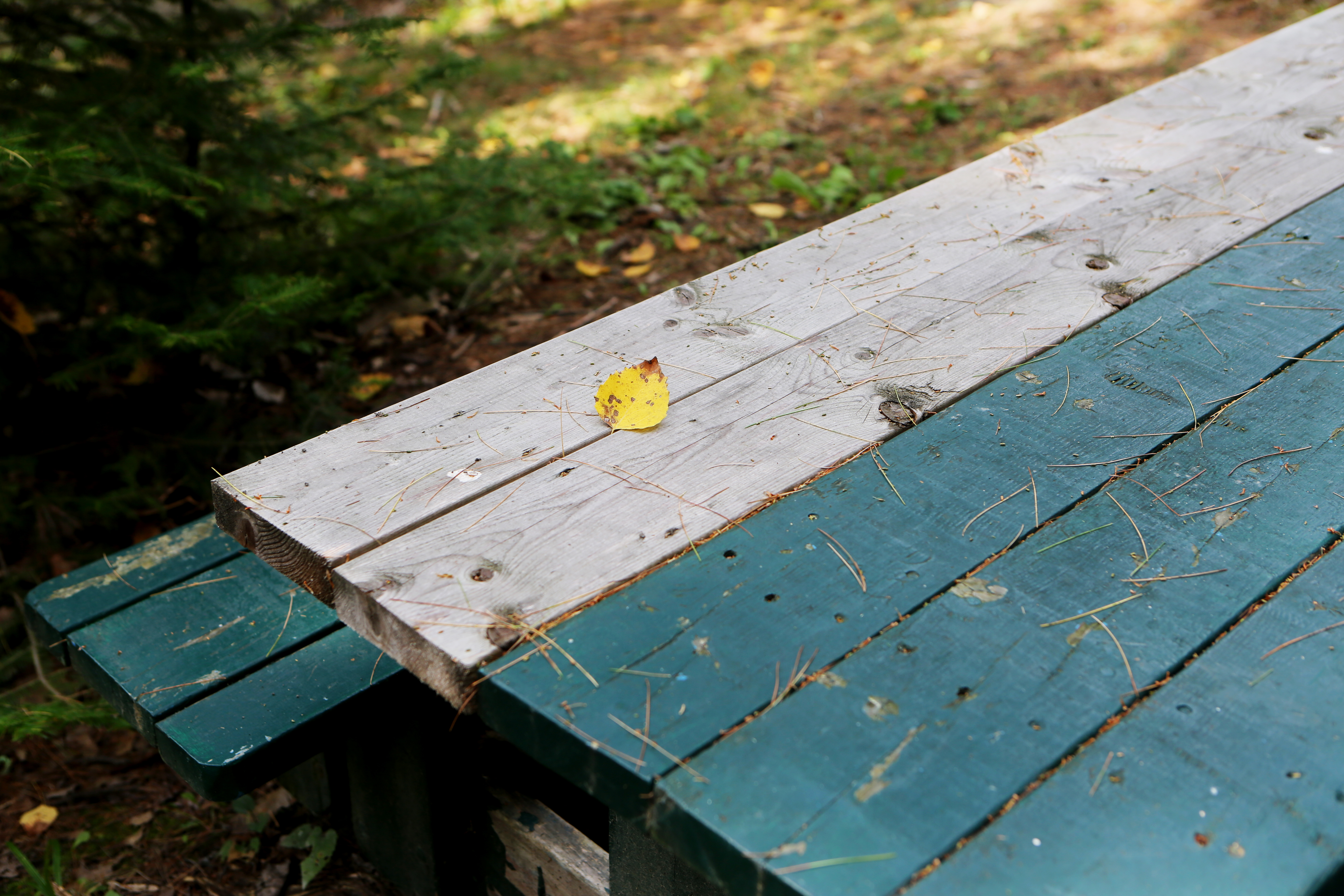 Table bench photo