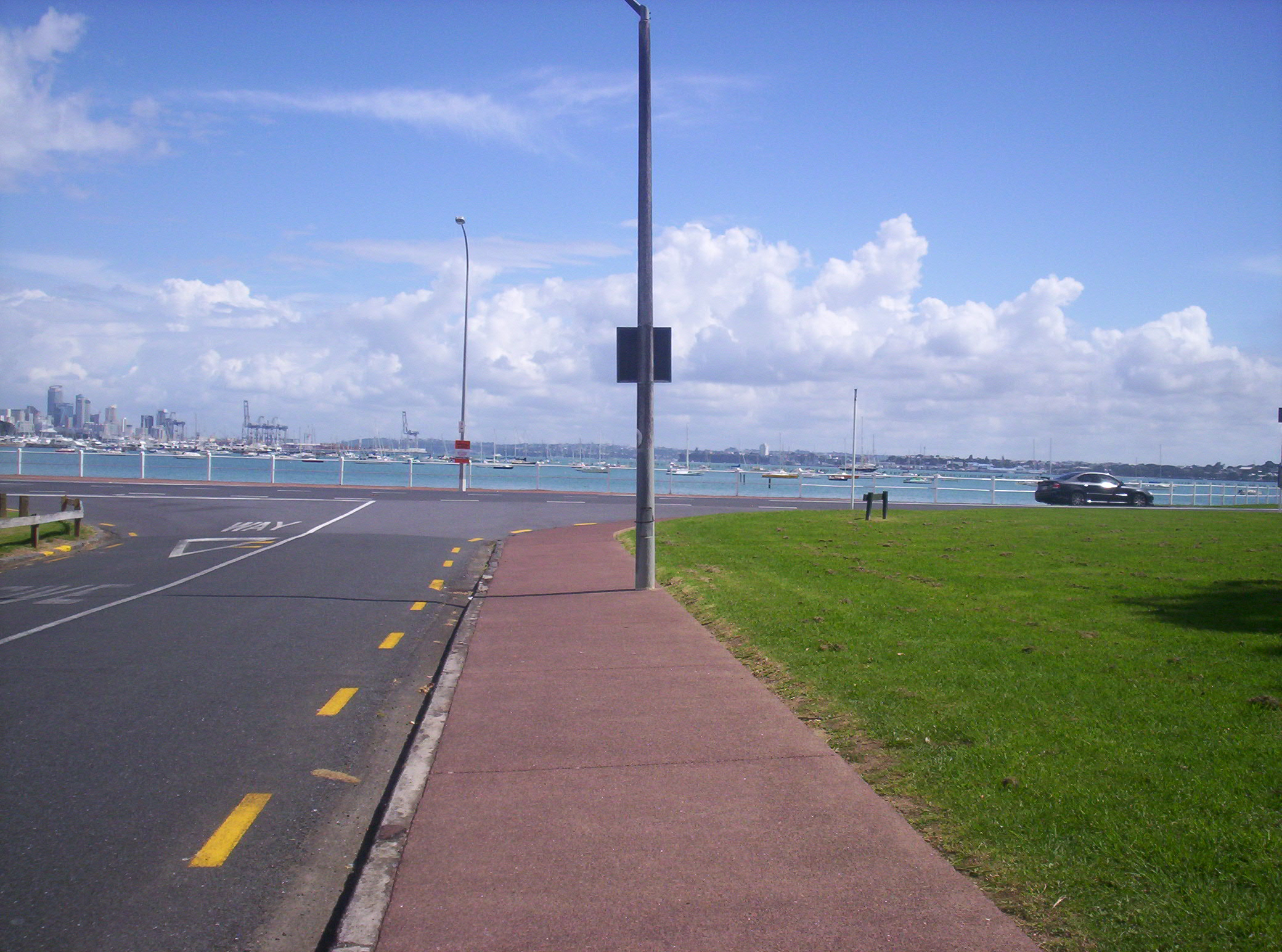 Tamaki drive - auckland water front photo