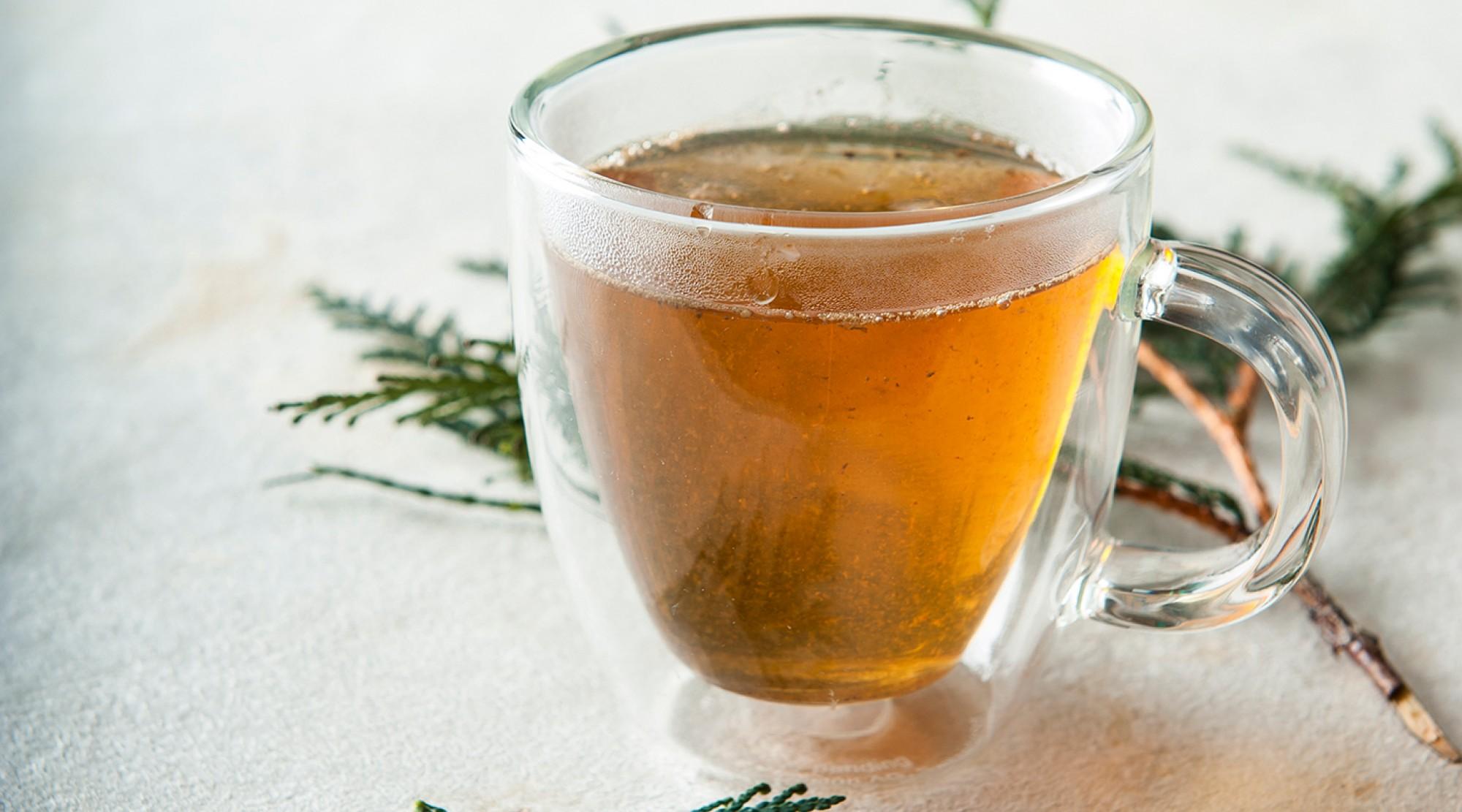 Cedar Tea | The Splendid Table
