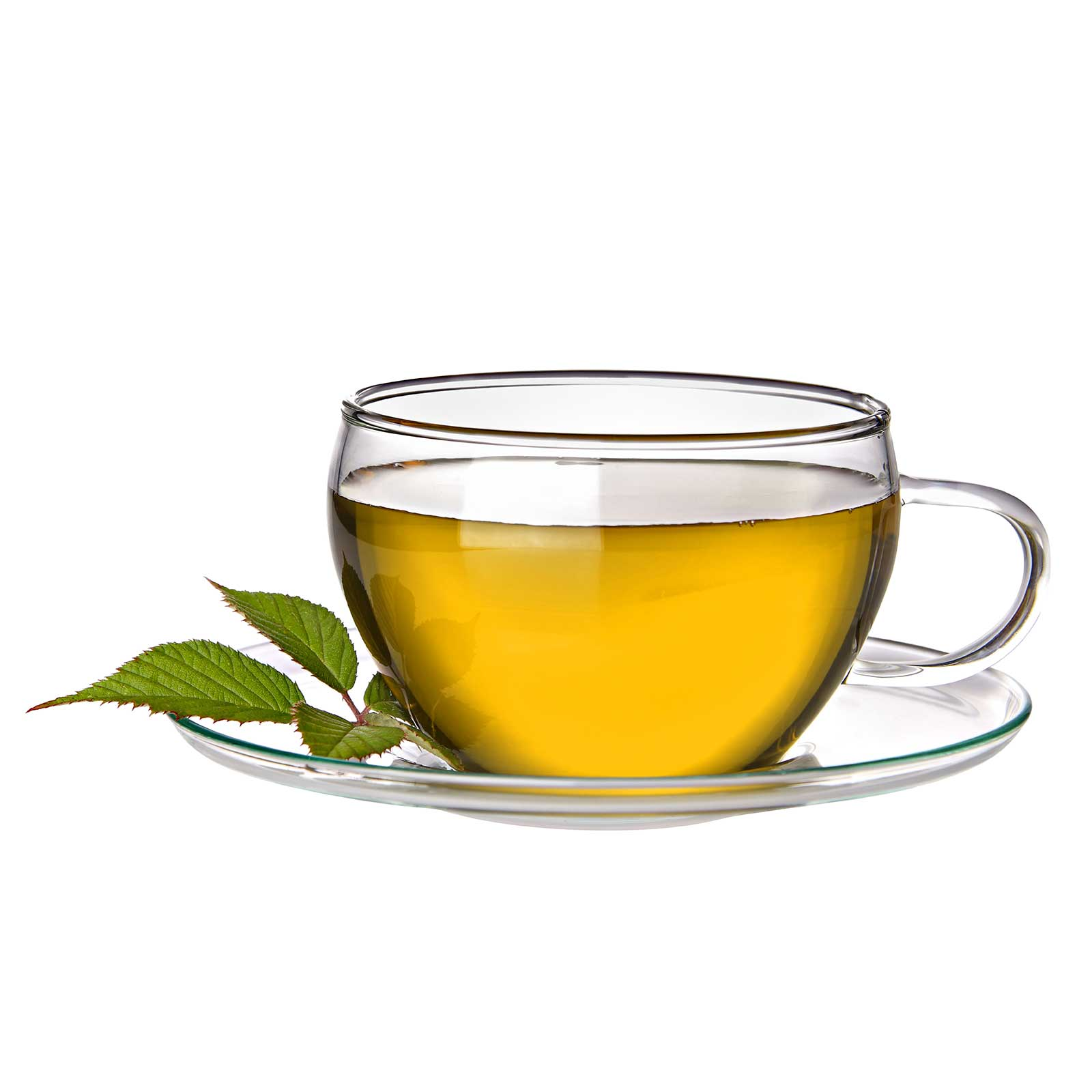 Support the You Can Thrive! breast cancer charity - Green Tea ...