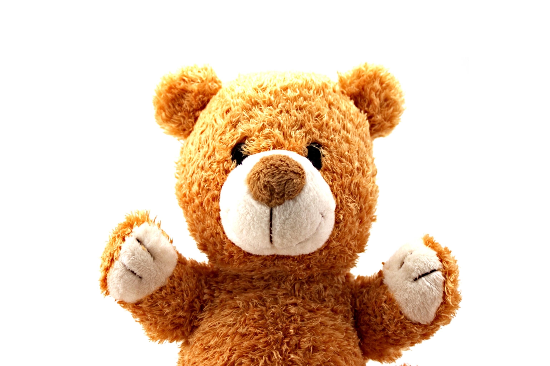 Teddy bear, Animal, Sitting, Object, Over, HQ Photo