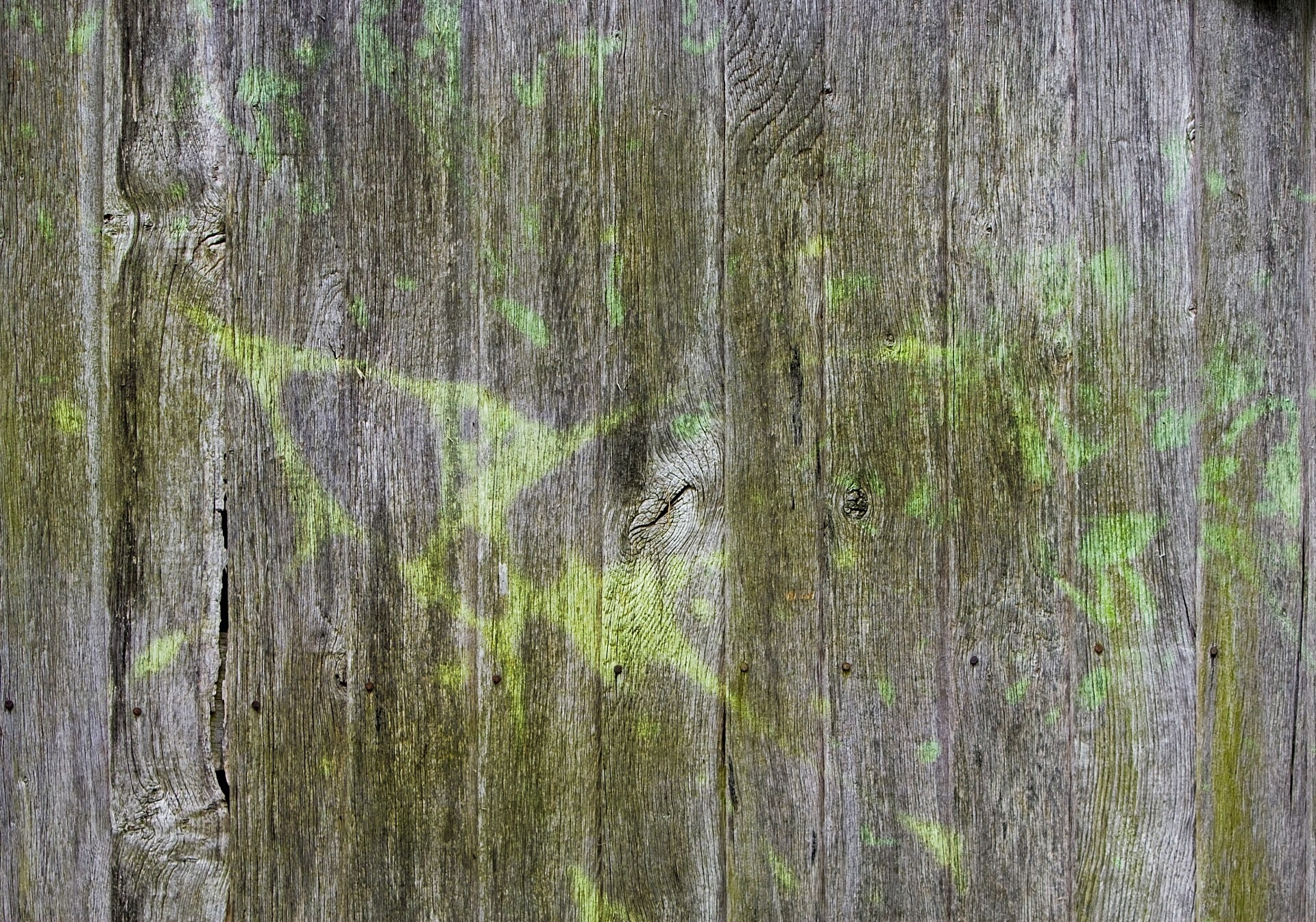 Texture, Wooden, Wood, Timber, Fuel, HQ Photo