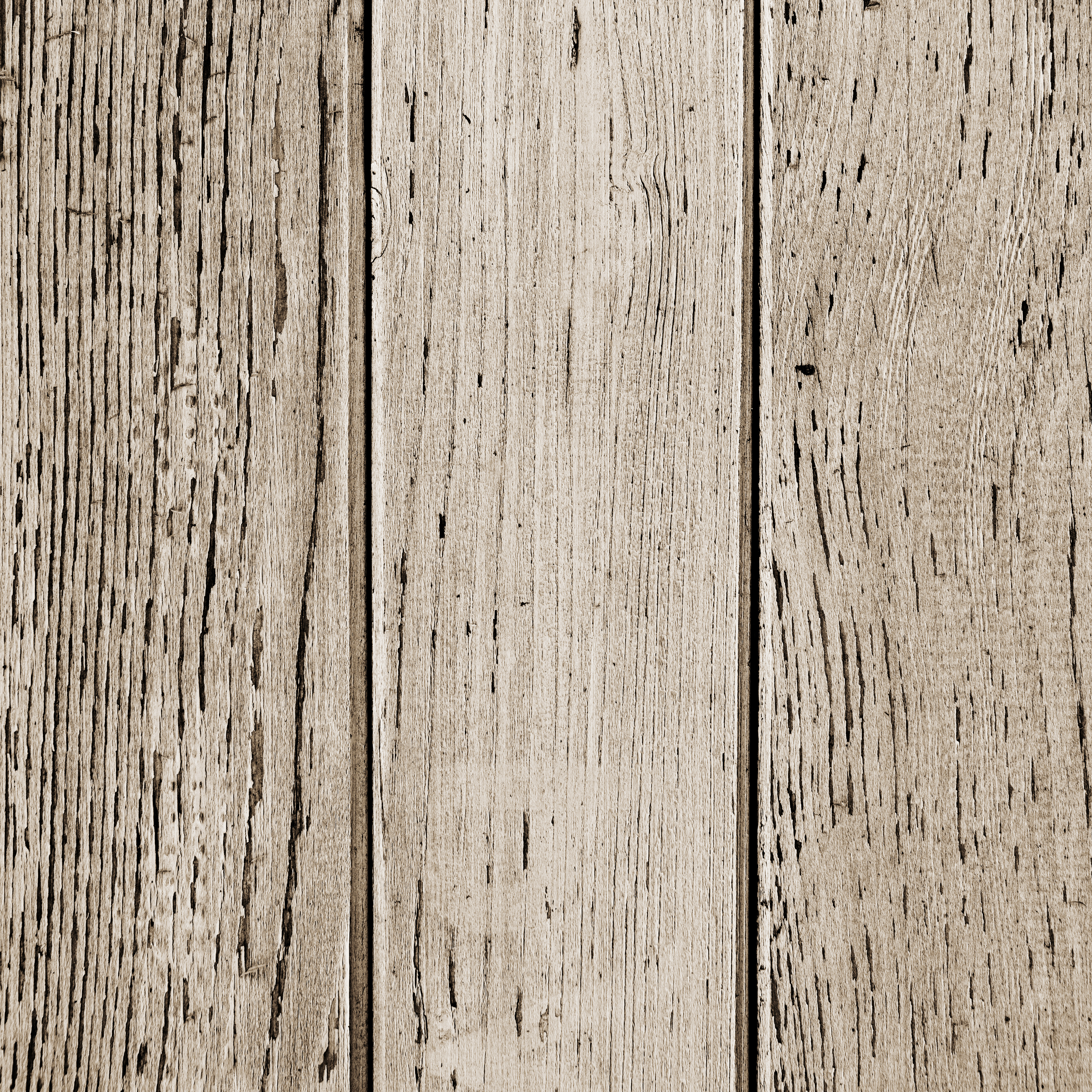 Texture of wood background closeup photo