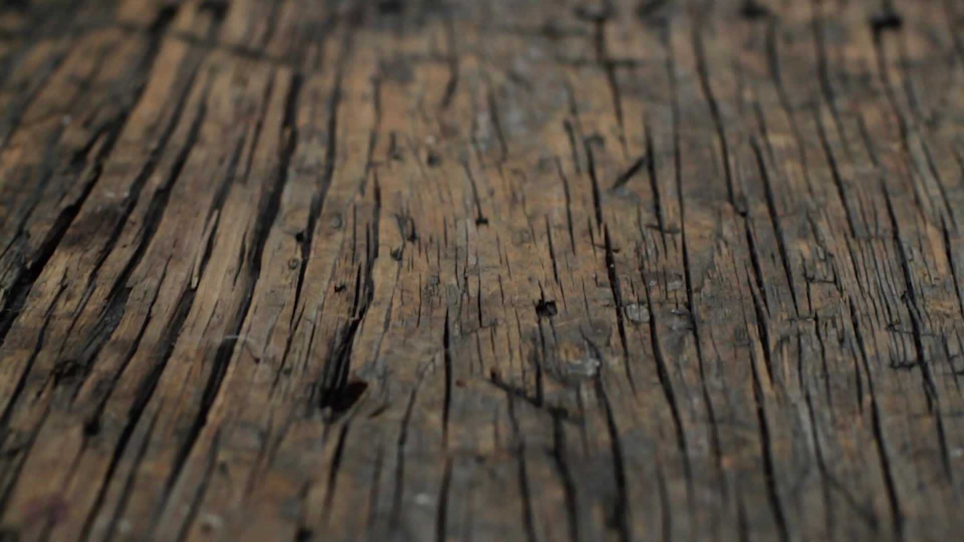 Video: Primitive driftwood texture - rough wood surface - 1080p slow ...