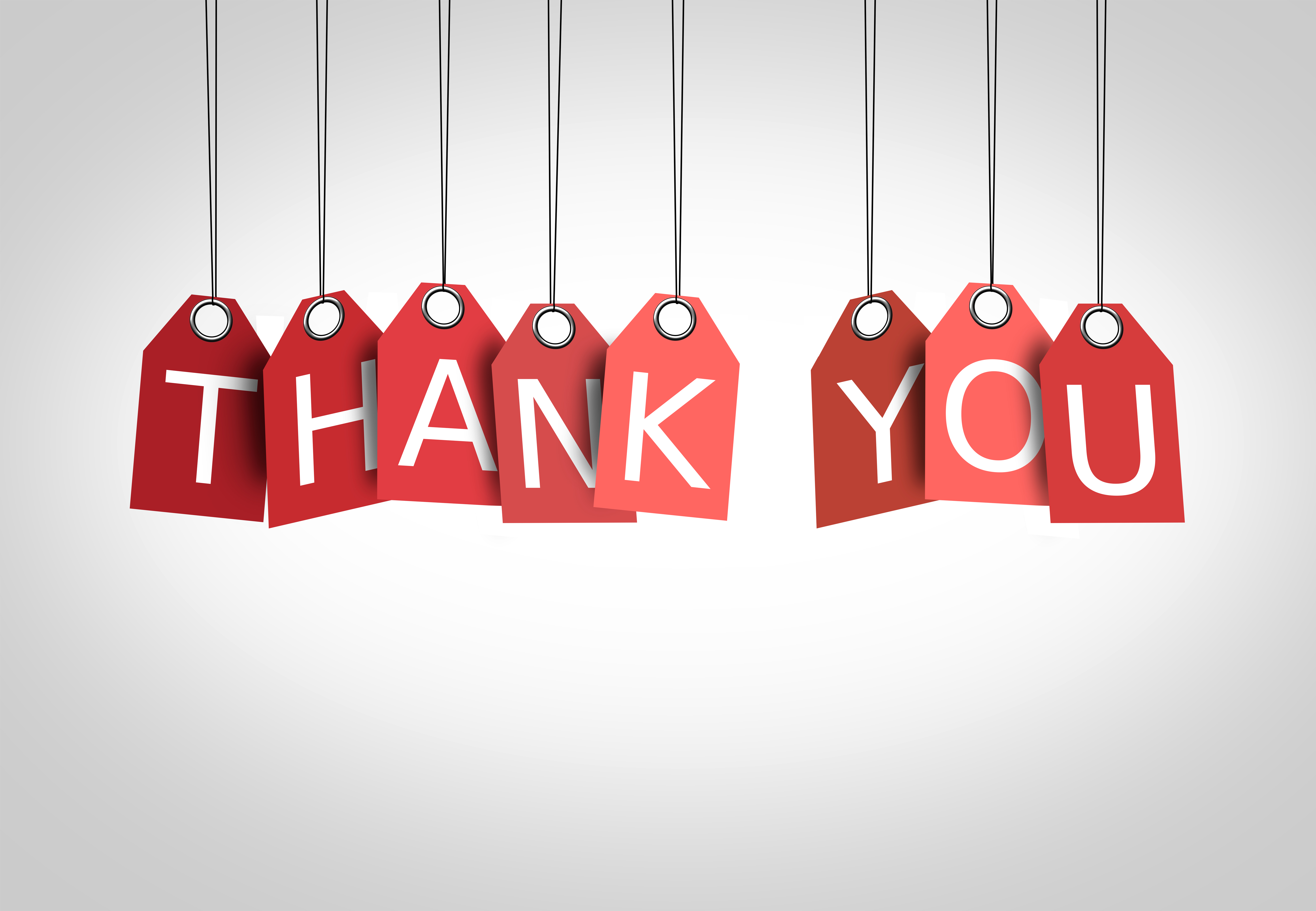 Thanking concept - Labels displaying the words Thank You, Red, Shape, Set, See, HQ Photo