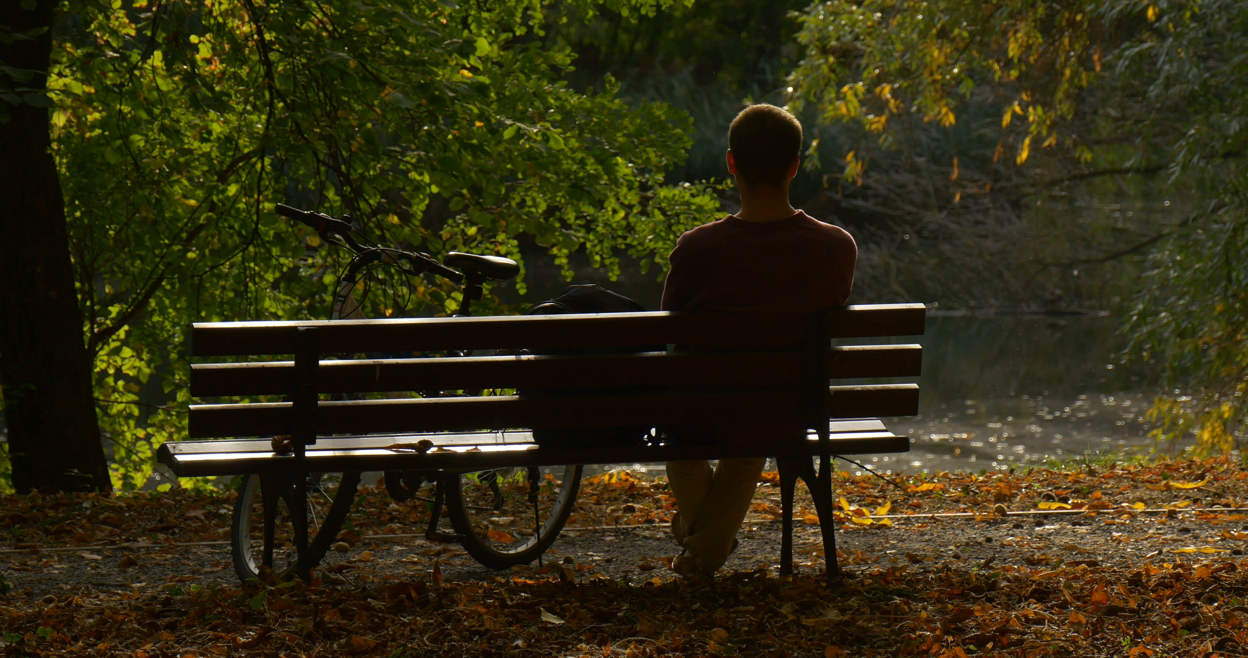 Man is Sitting on The Bench Man's Back Bicycle is Standing Close to ...
