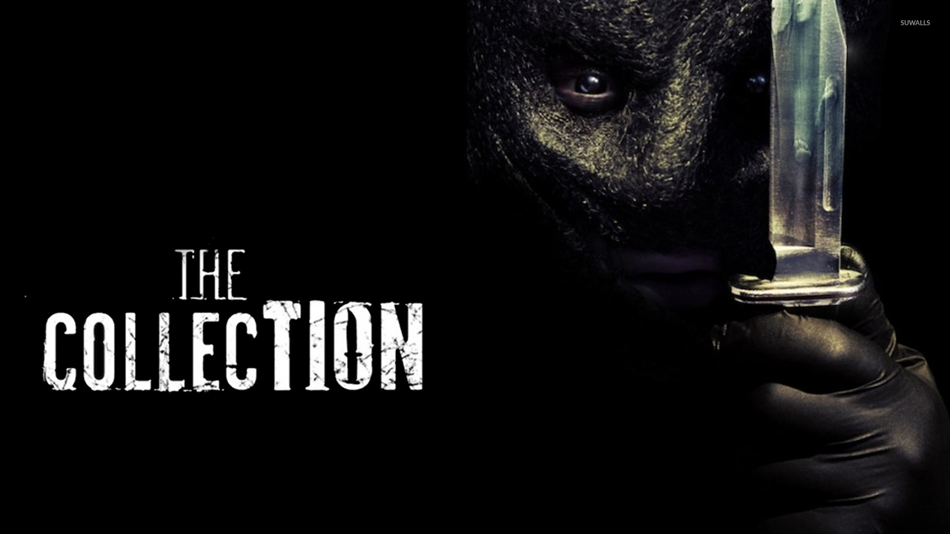 The Collector - The Collection wallpaper - Movie wallpapers - #16339