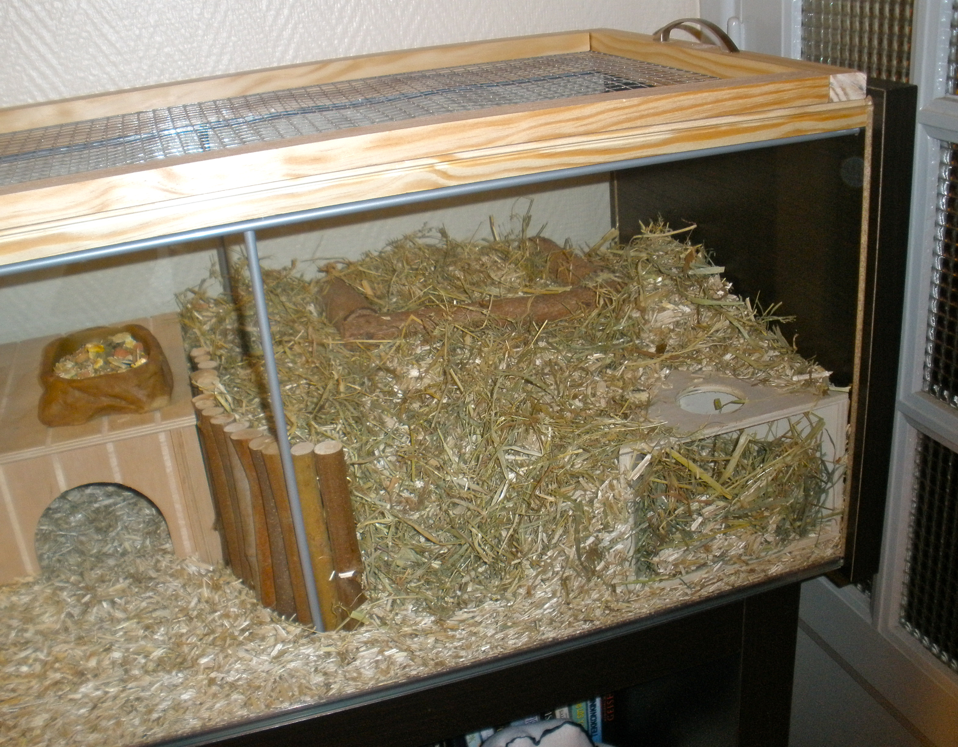 The digging area, Accessories, Modern, Terrarium, Tank, HQ Photo