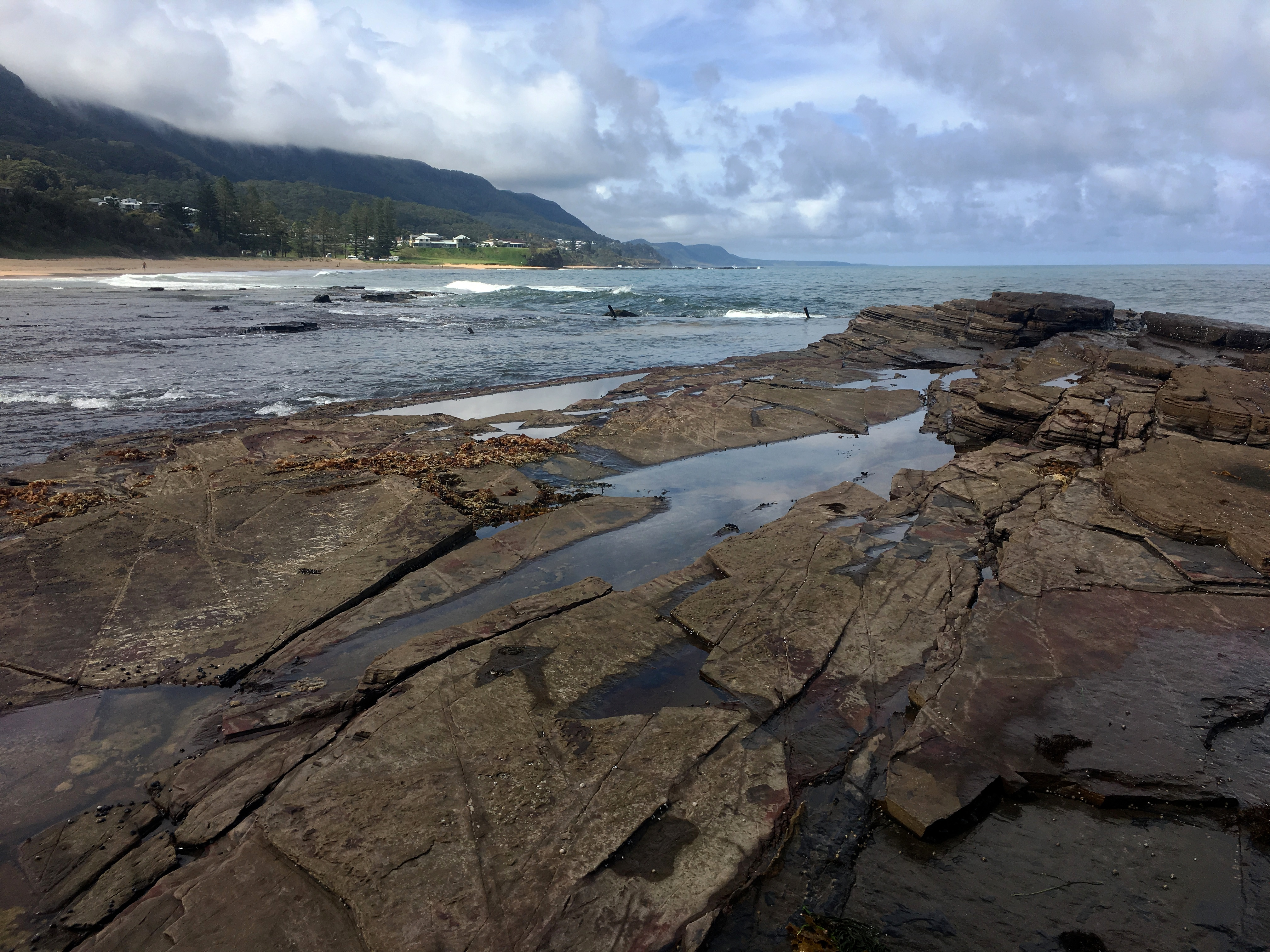 The eastern australia coast photo