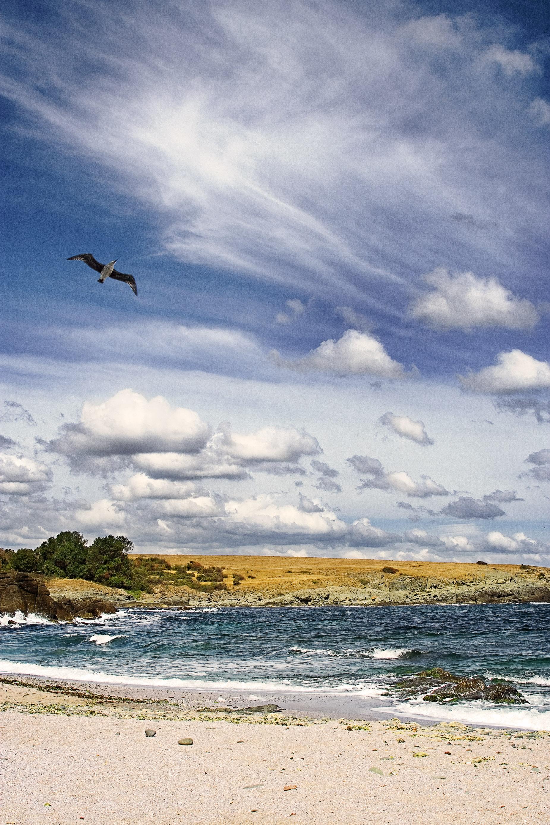 The endless summer..., Beach, Blue, Bspo06, Clouds, HQ Photo