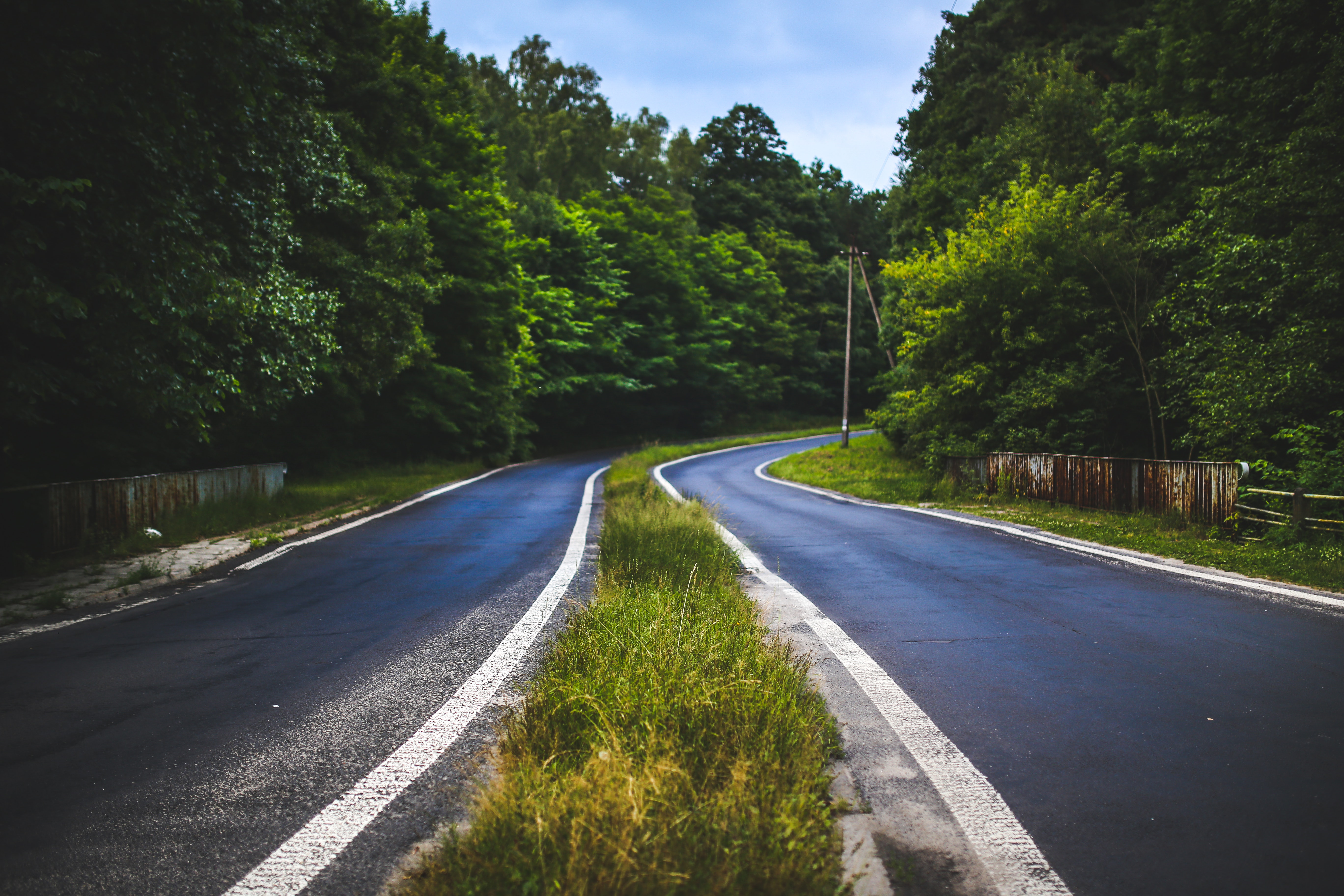 The forest road, Asphalt, Perspective, Way, Trip (journey), HQ Photo
