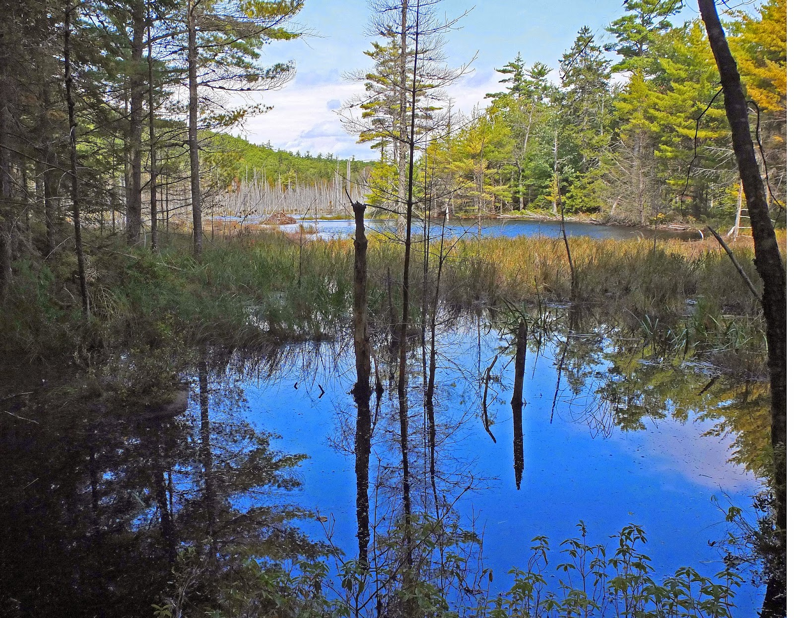 Hiking in Maine with Kelley: 9/20/14 Hidden Ponds