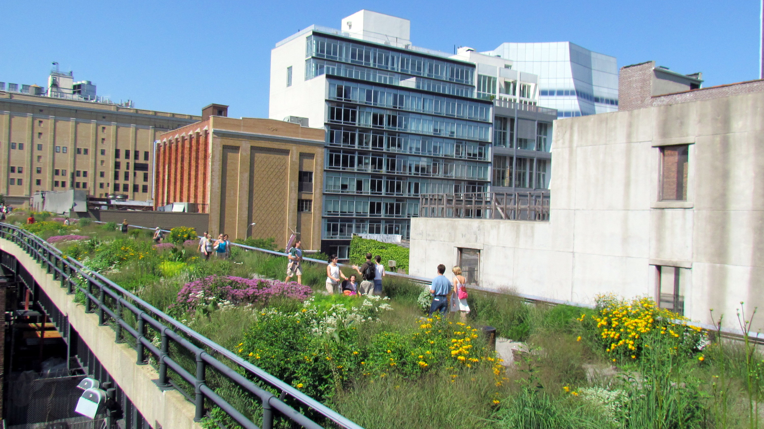 The highline photo