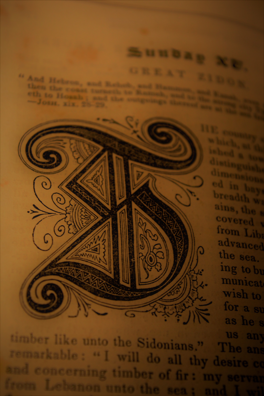 The Letter T, Alphabet, Antique, Book, Fancy, HQ Photo