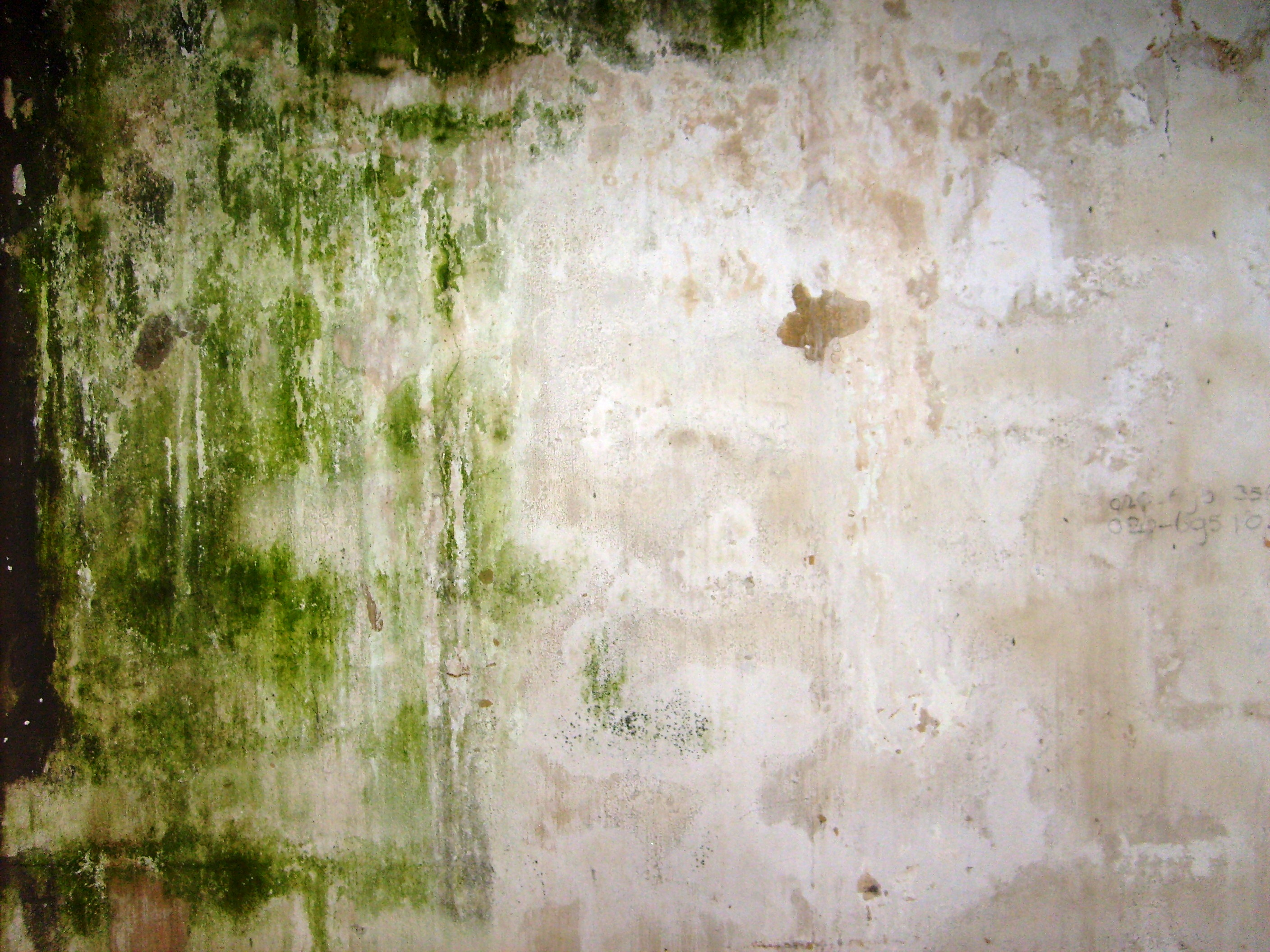 This is art - dirty wall photo
