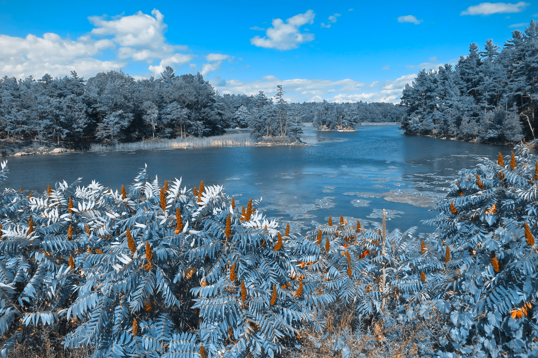 Thousand islands scenery - wintry blue photo