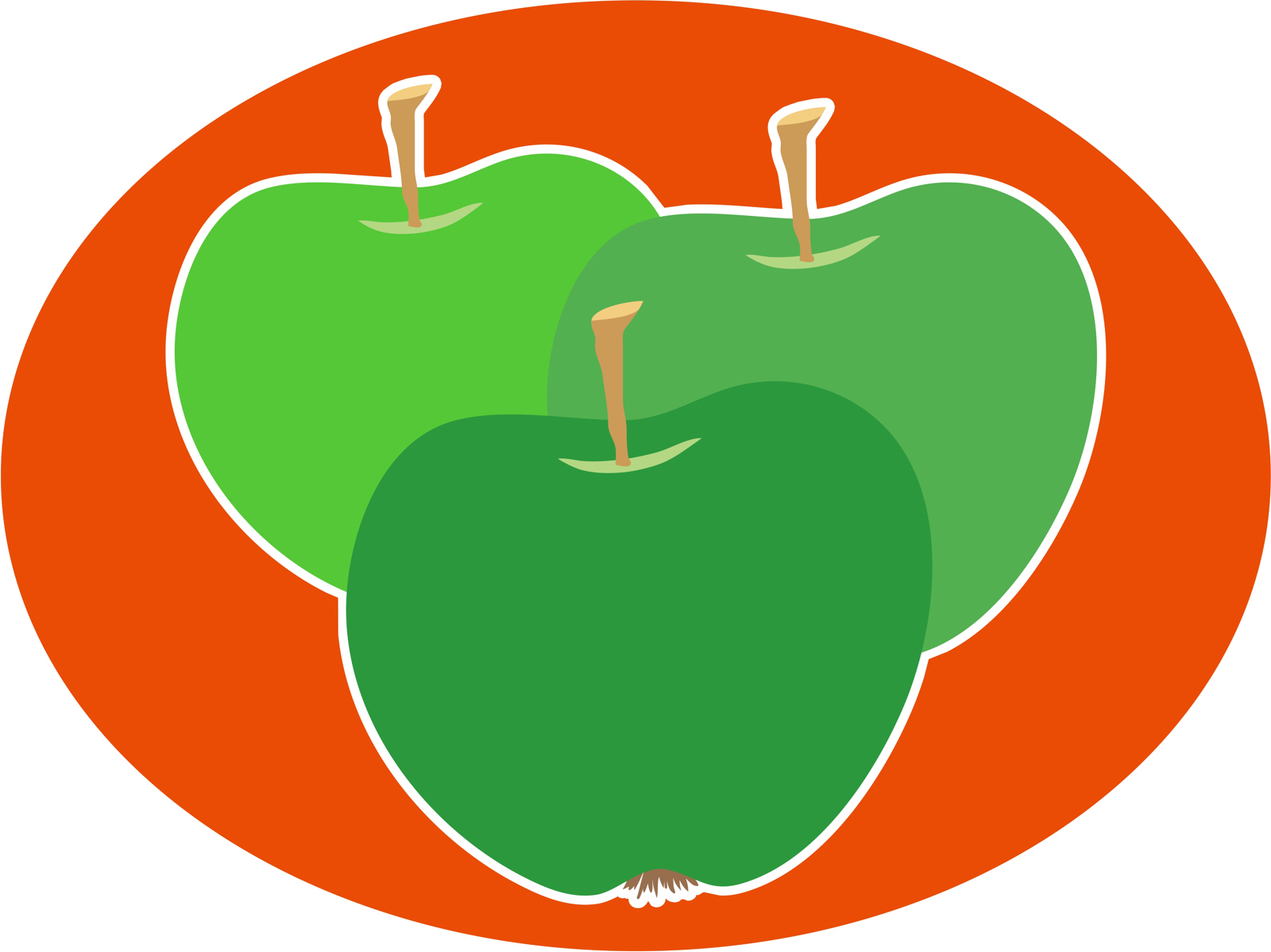 Three green apples photo