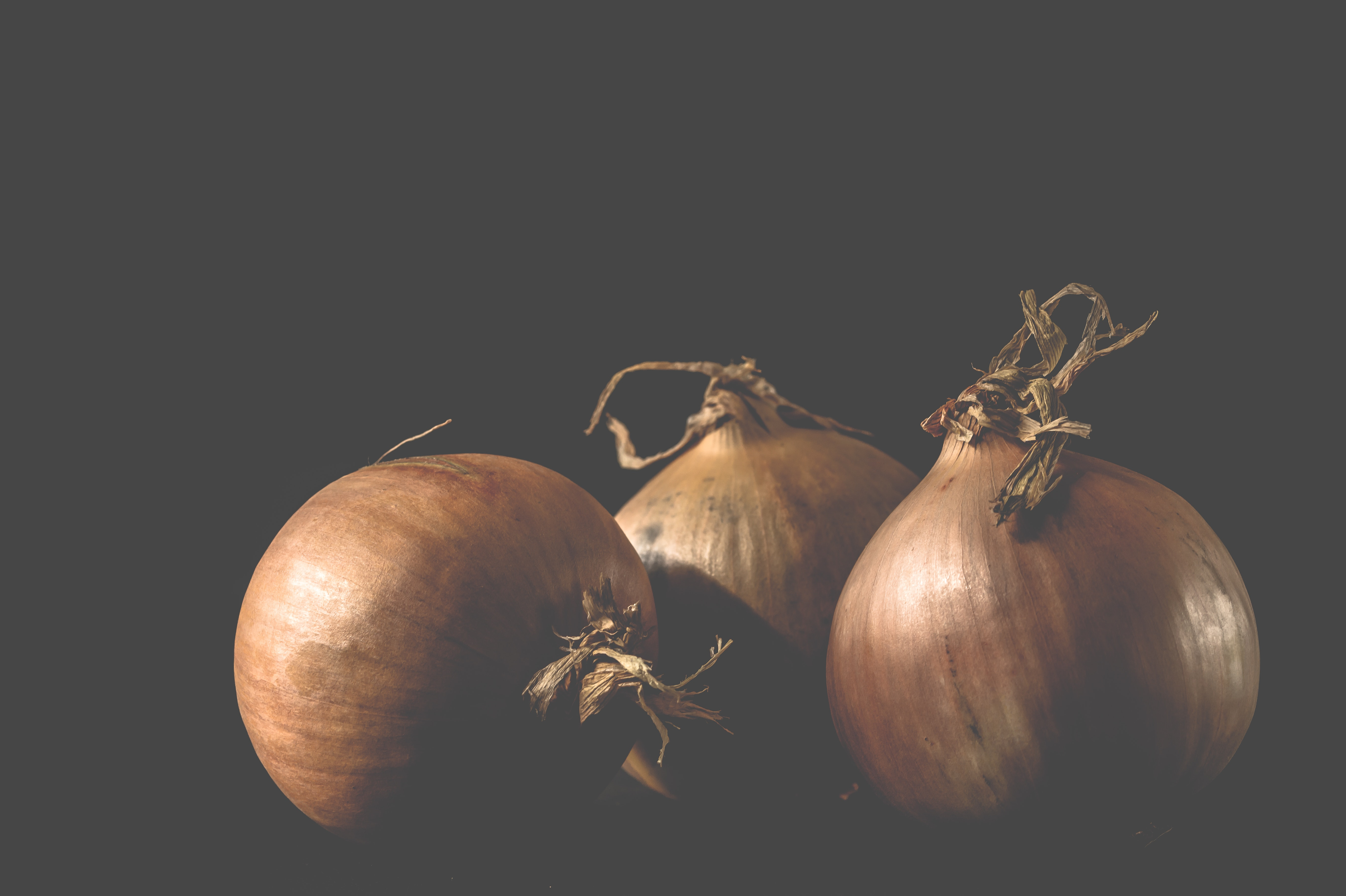 Three onions photo