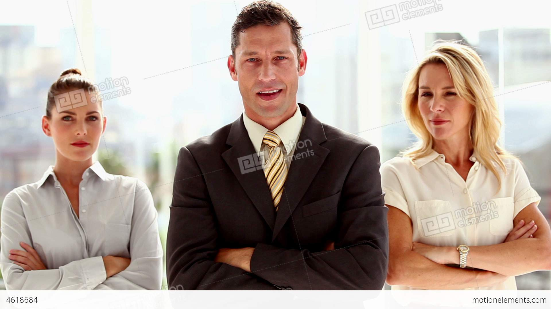 Three Smiling Business People Standing Stock video footage | 4618684
