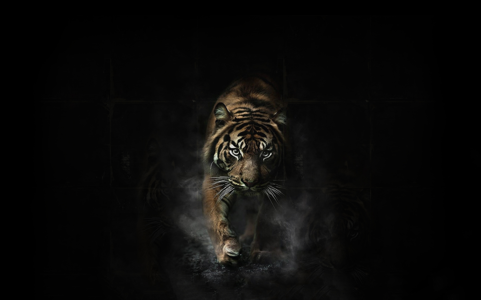 Tiger artwork #6912502