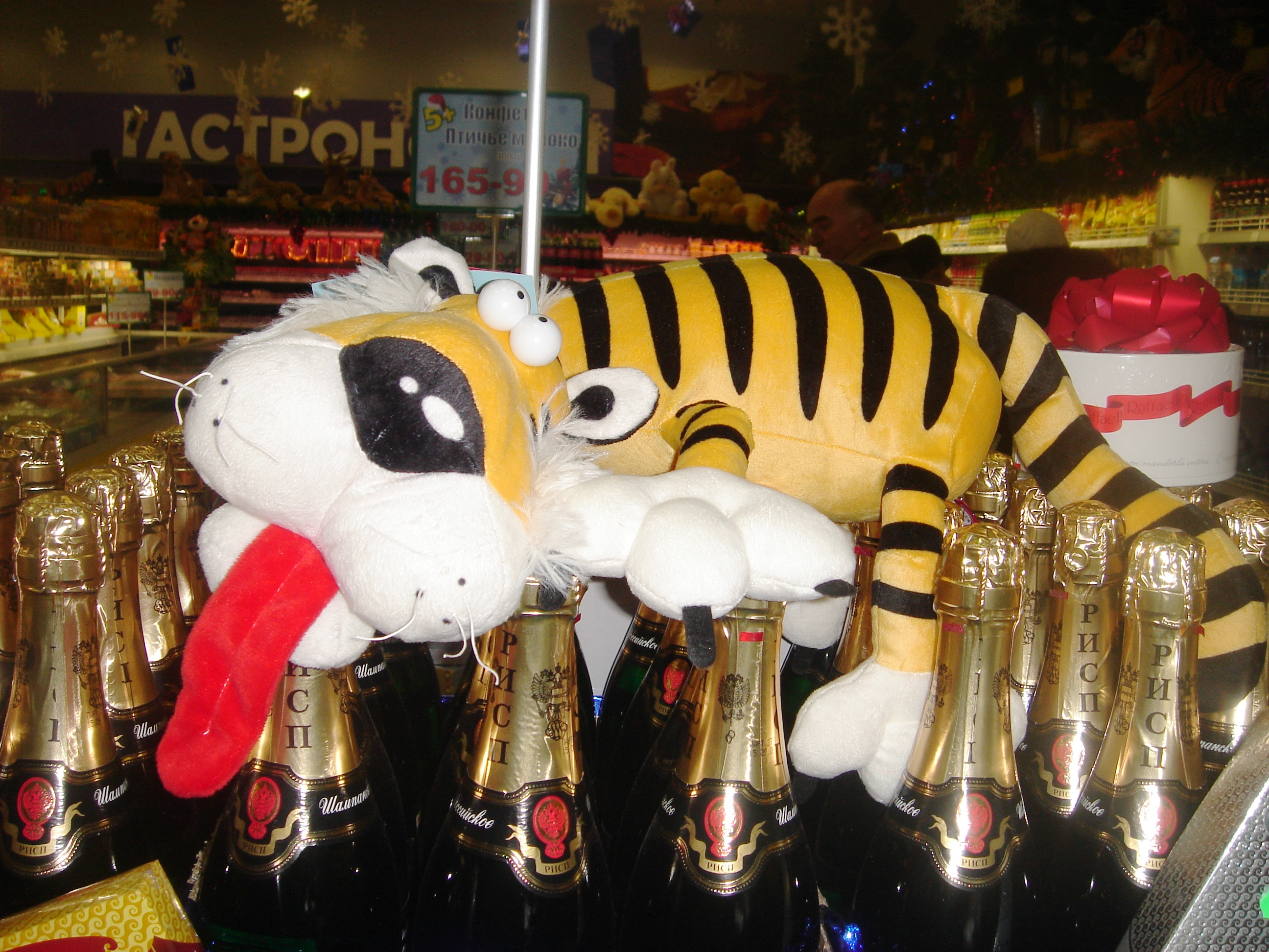 Tiger champaign new year photo