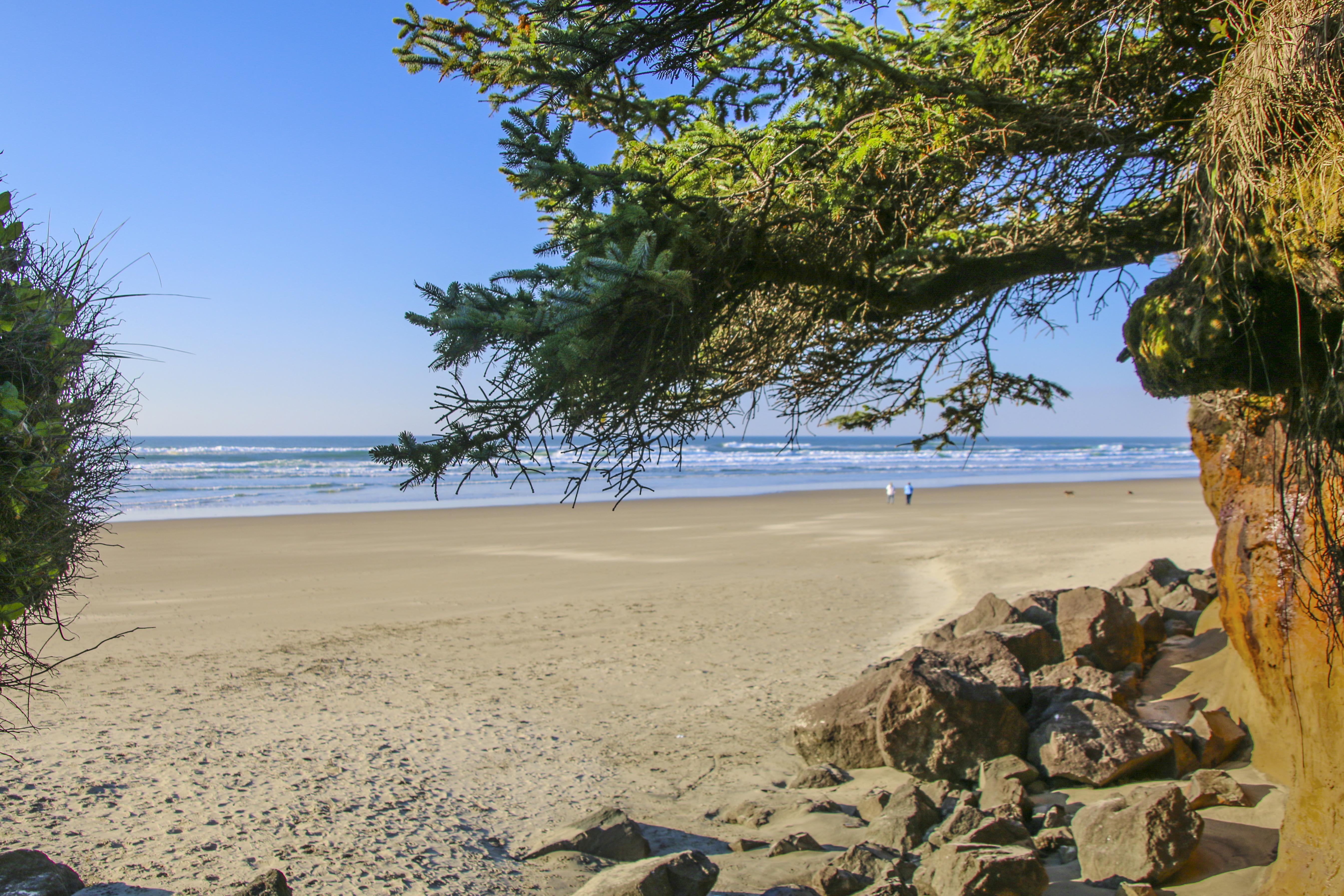 Tillicum beach sstate park, oregon photo