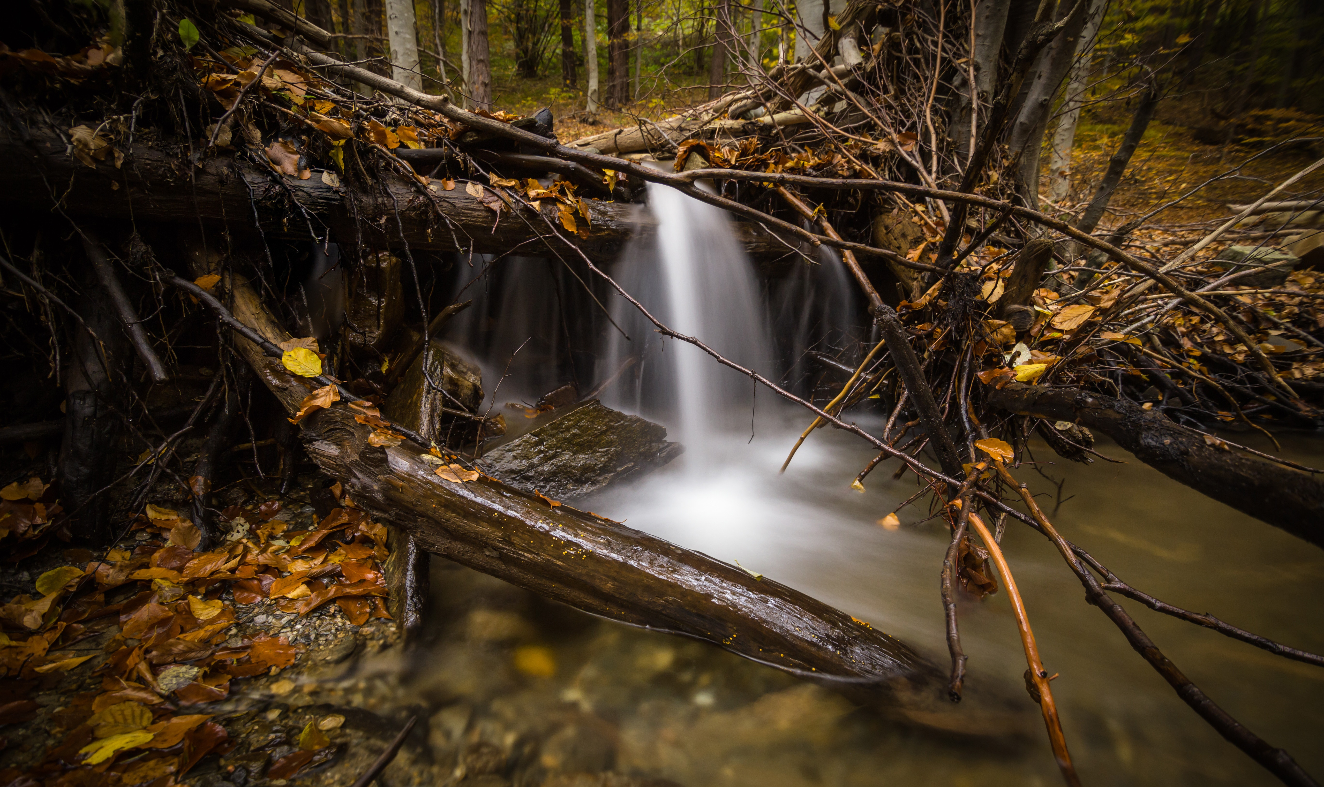 Time lapse photography of falls surrounded by trees