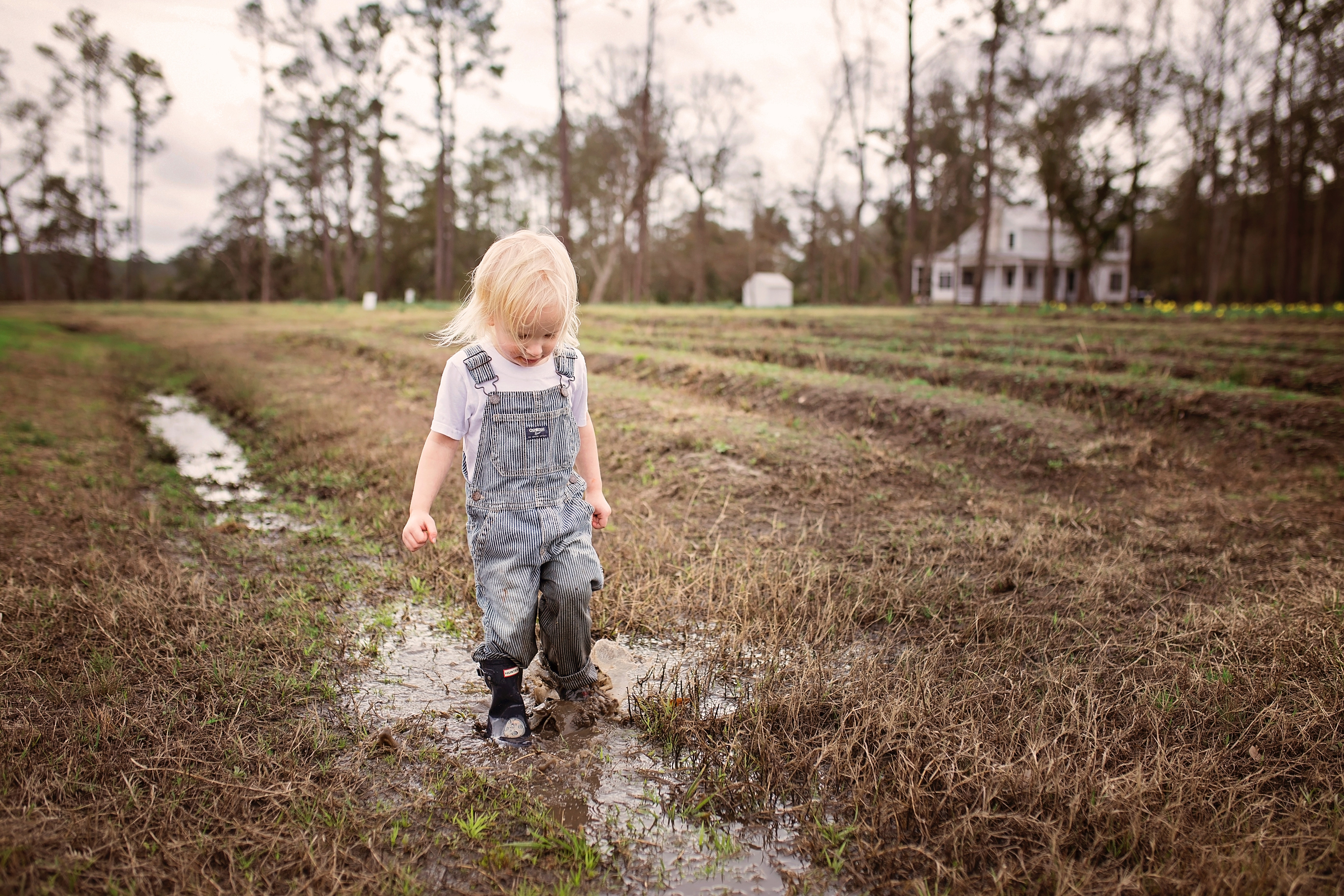 Toddler wearing blue denim overall pants walking on wet withered grass photo