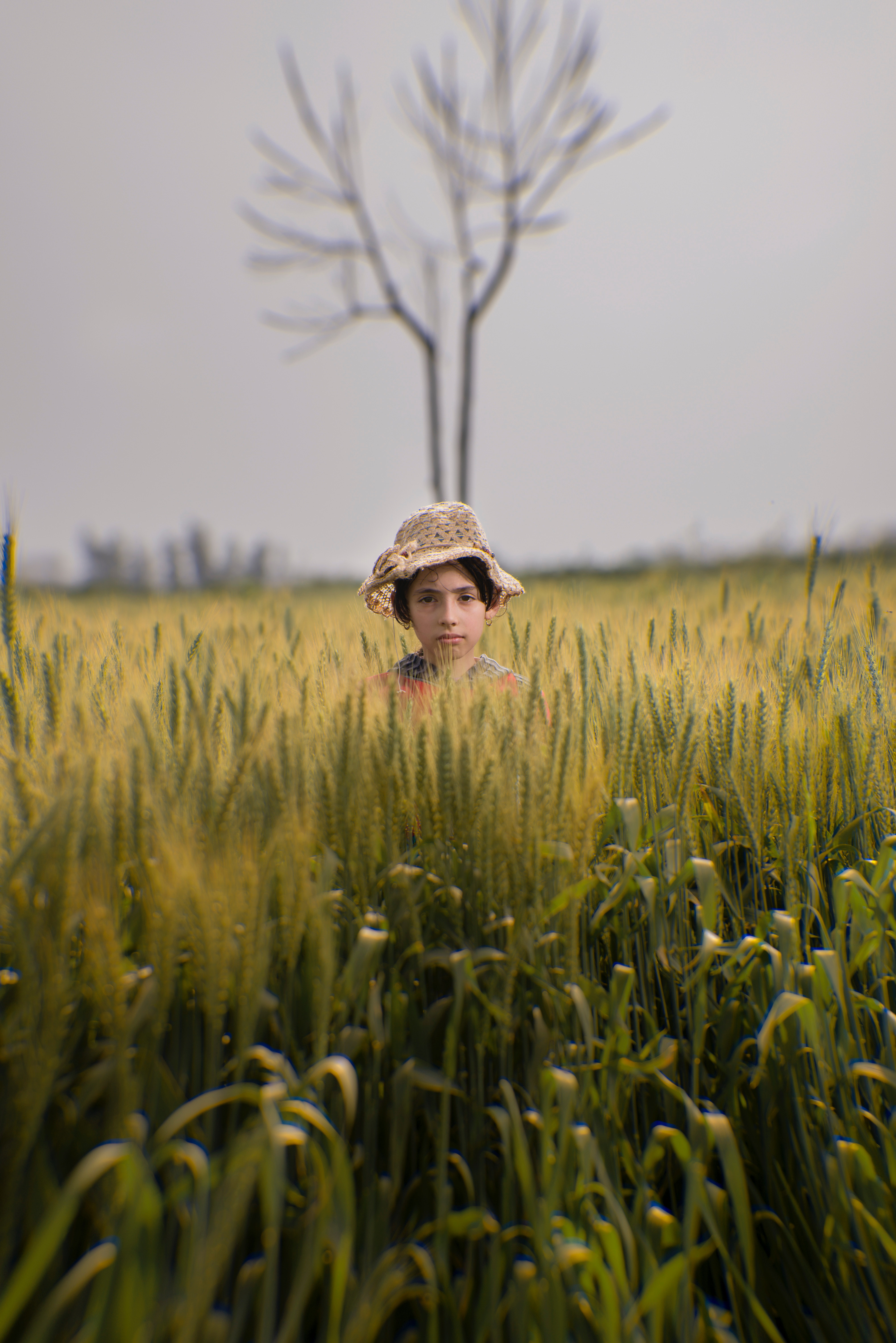 Toddler wearing brown hat in the middle of green field photo