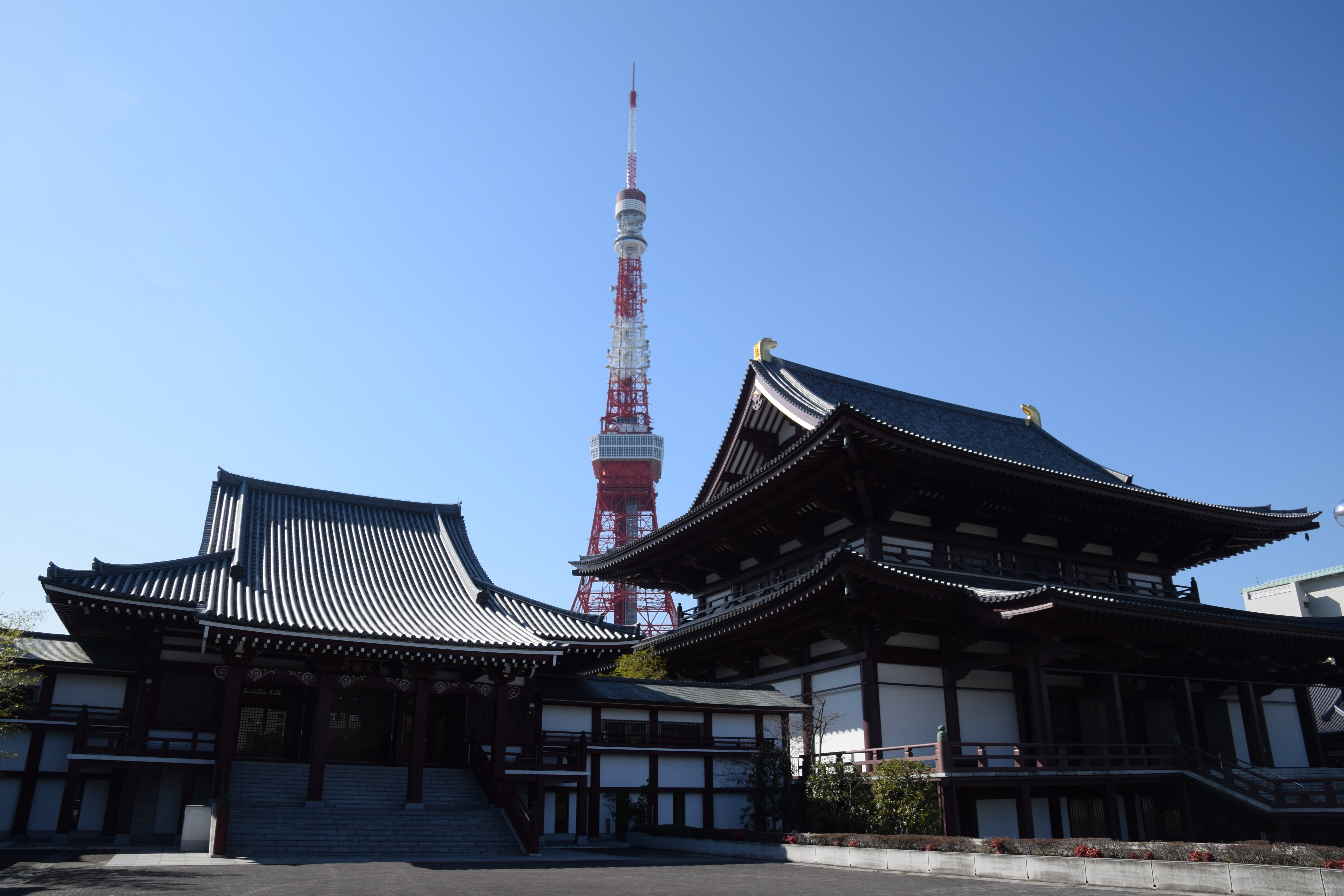 Tokyo tower behind black and white dojo building during daytime photo