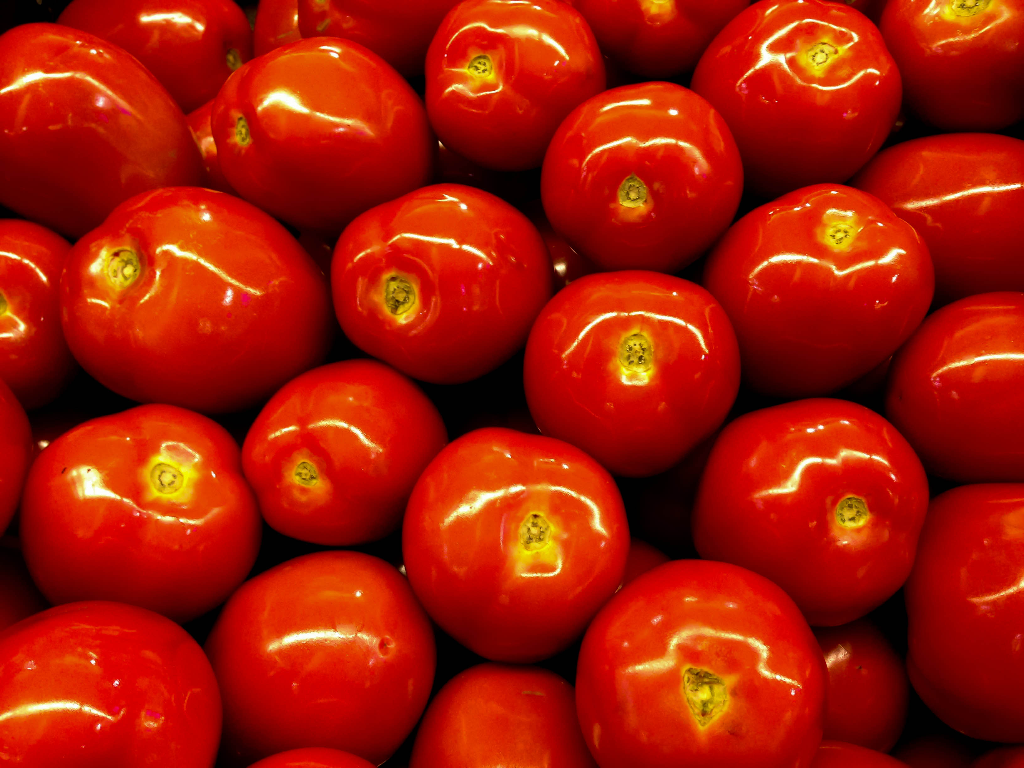 Tomatoes, Wood, Red, Kitchen, Knife, HQ Photo
