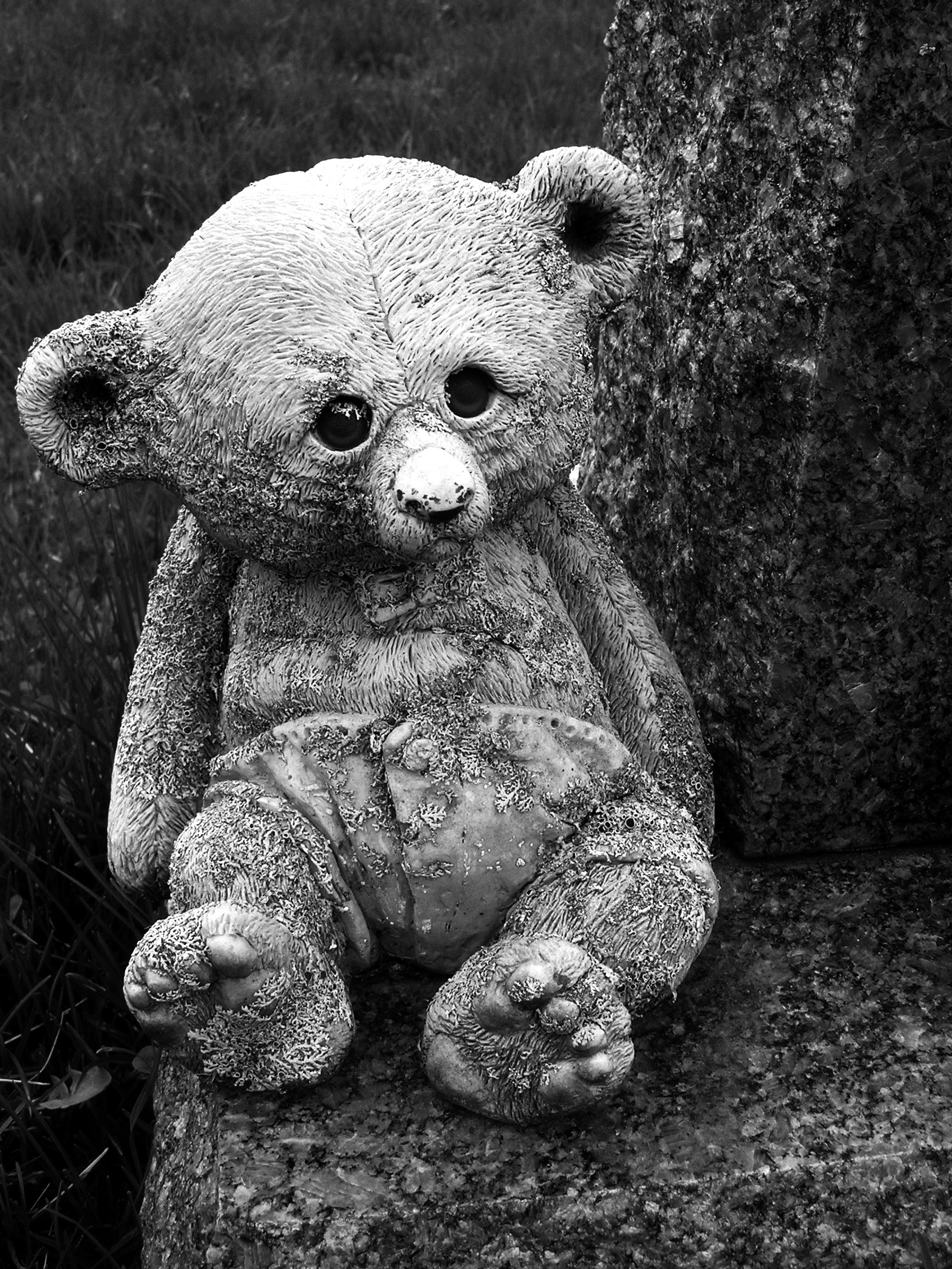 Tombstone teddy bear photo