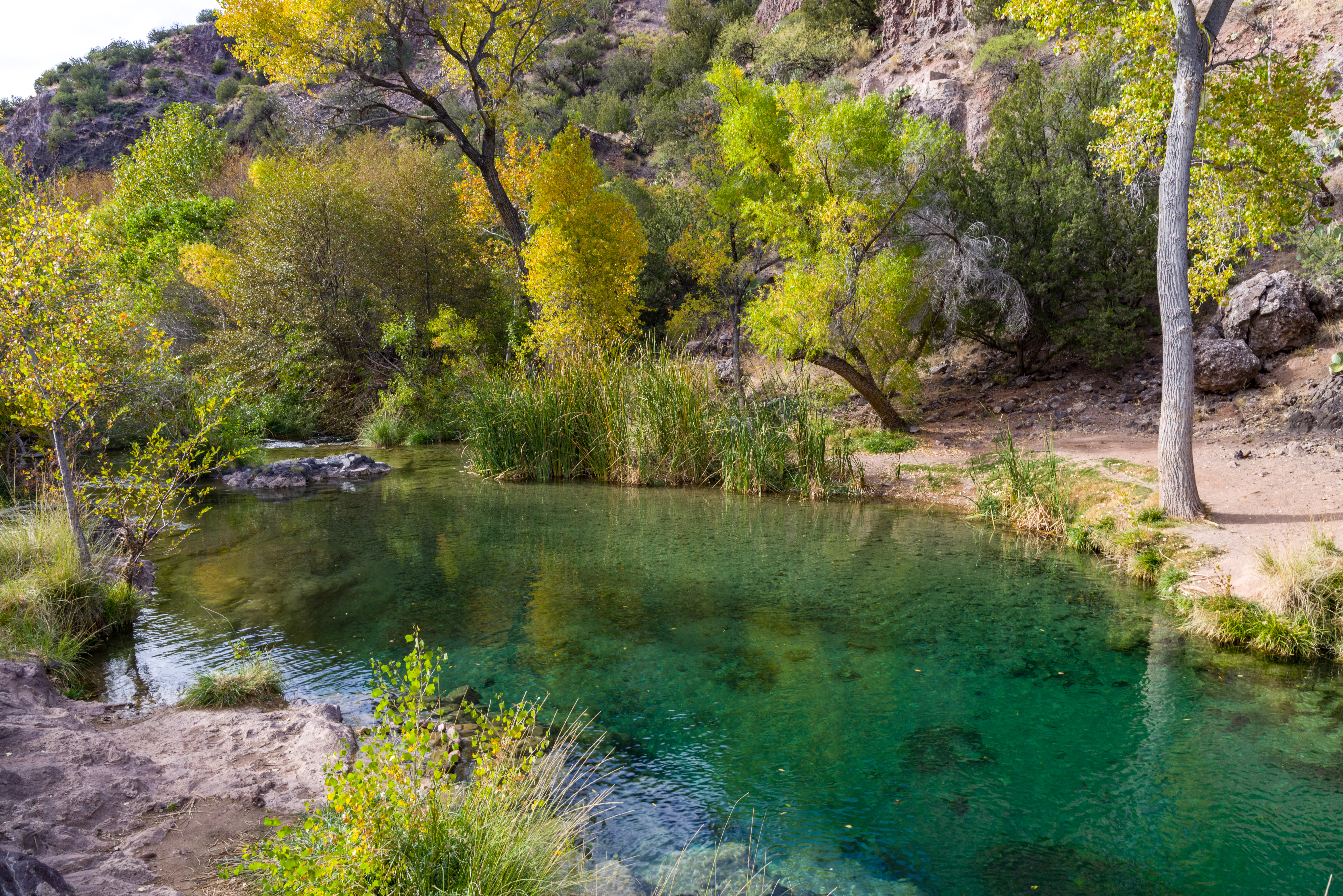 Tonto bench on fossil creek (november 14, 2017) photo