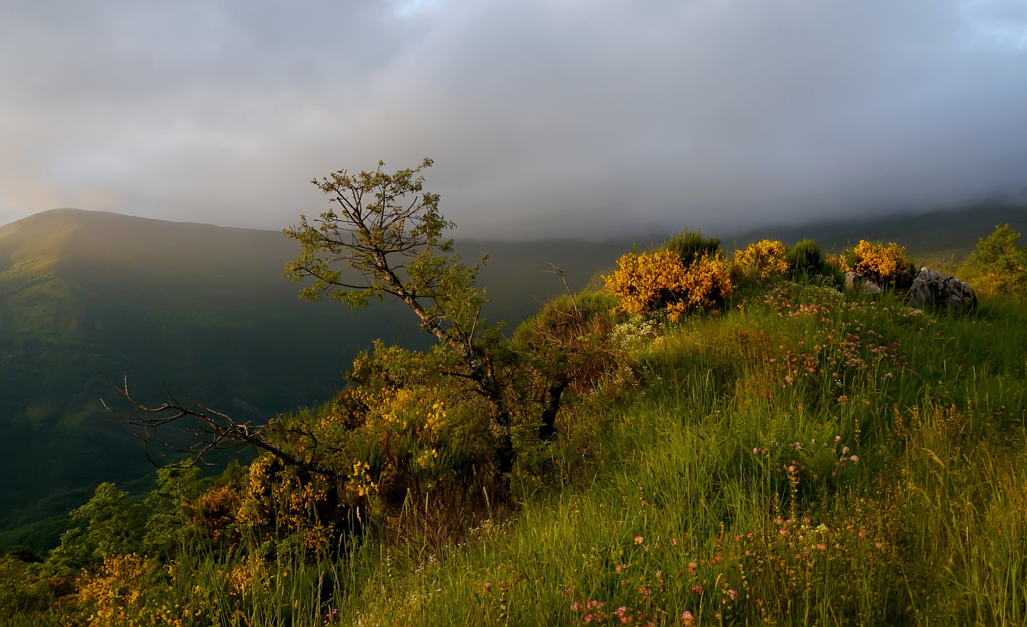 On the top of the hill / 2048 x 1250 / Nature / Photography ...