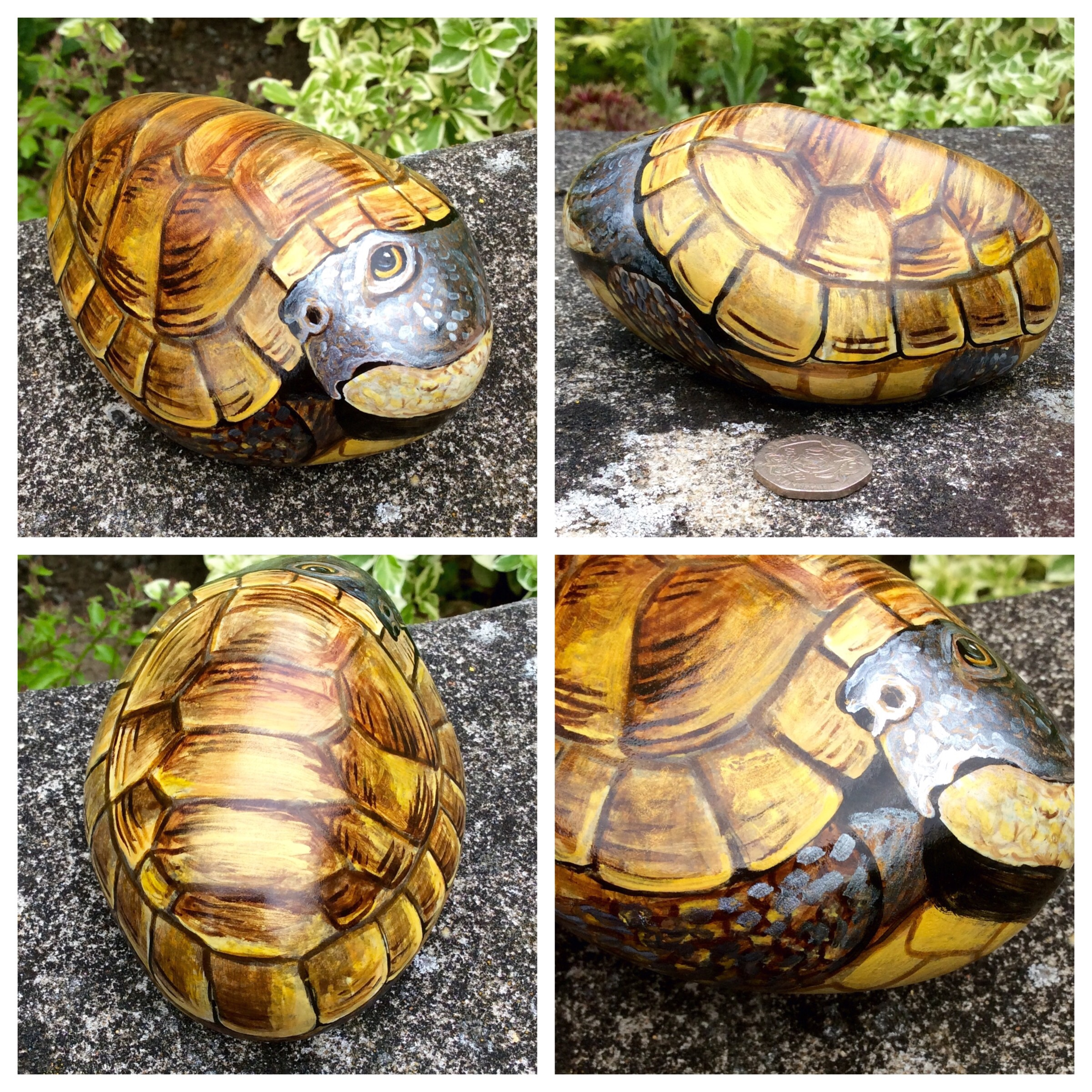 Tortoise hand painted on rock | CobbleCreatures
