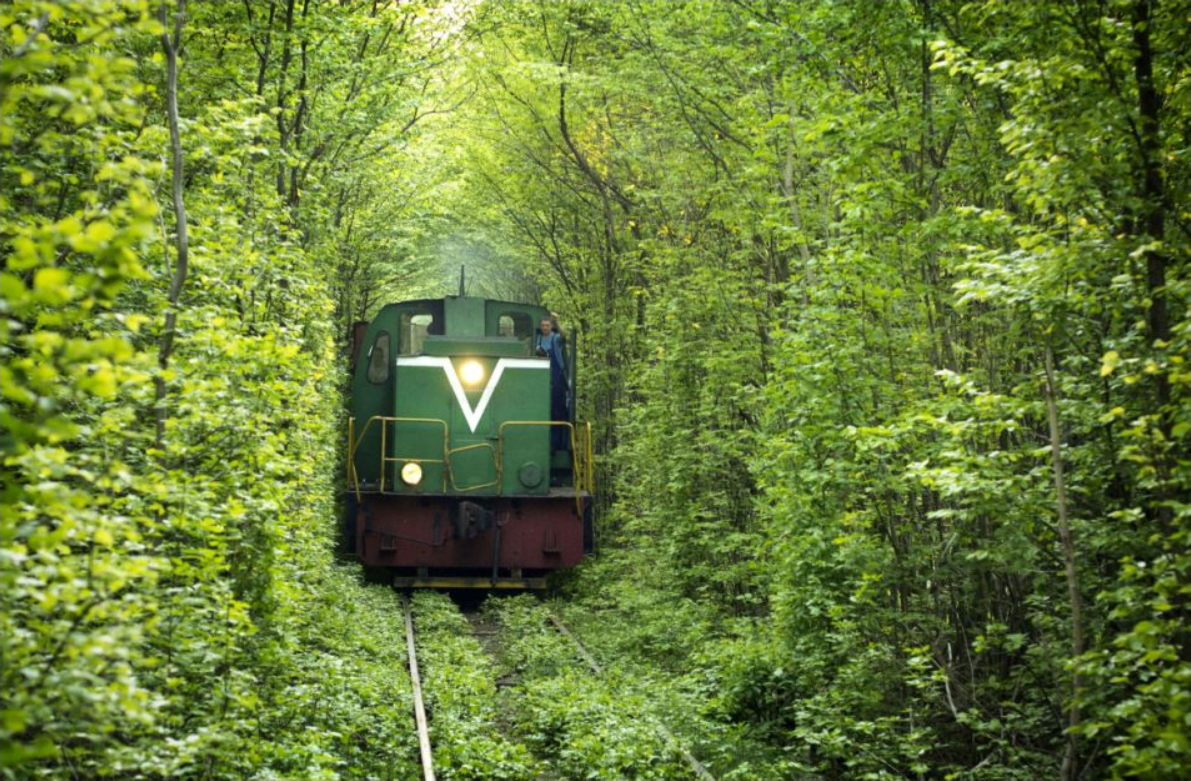 Train On Tunnel Of Love Travel Picture Travel #9927 Wallpaper ...