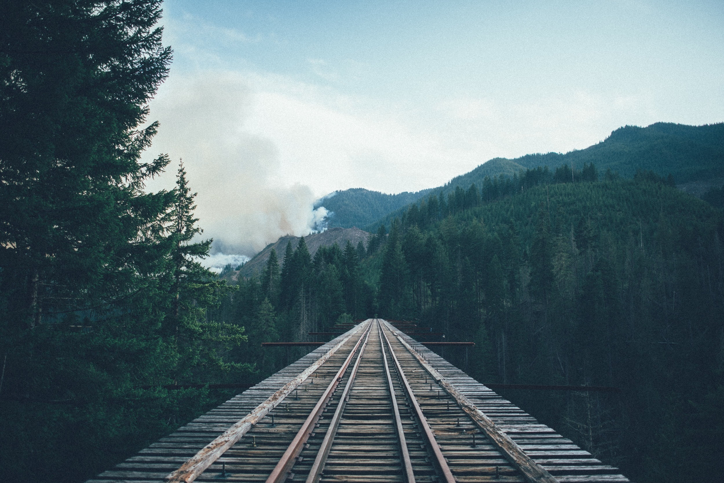 Low-angle photography of train track with forest background HD ...
