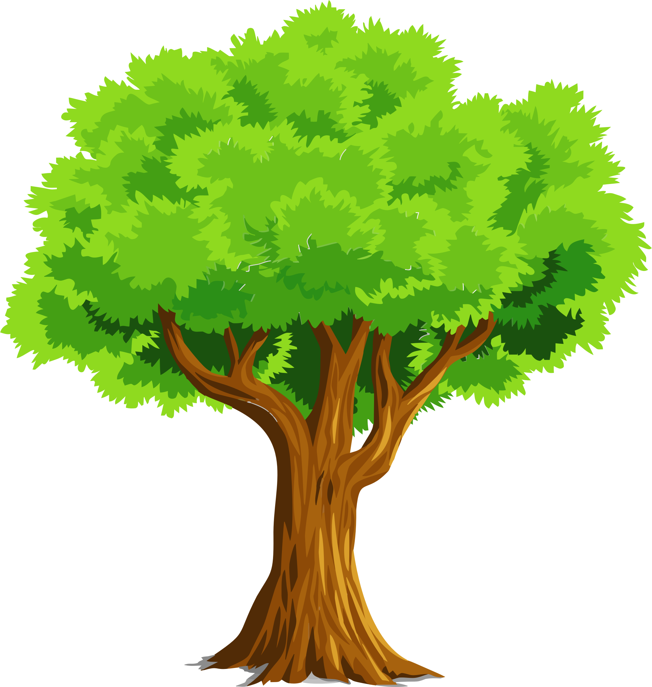Colorful Natural Tree Icons PNG - Free PNG and Icons Downloads