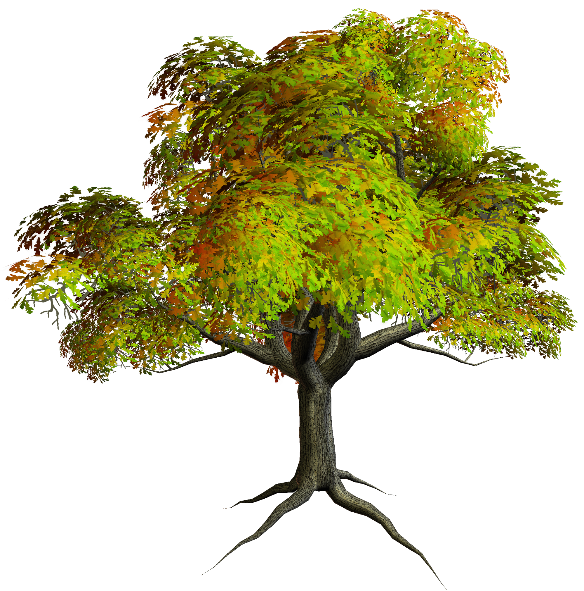 Autumn PNG Tree Clipart | Gallery Yopriceville - High-Quality ...