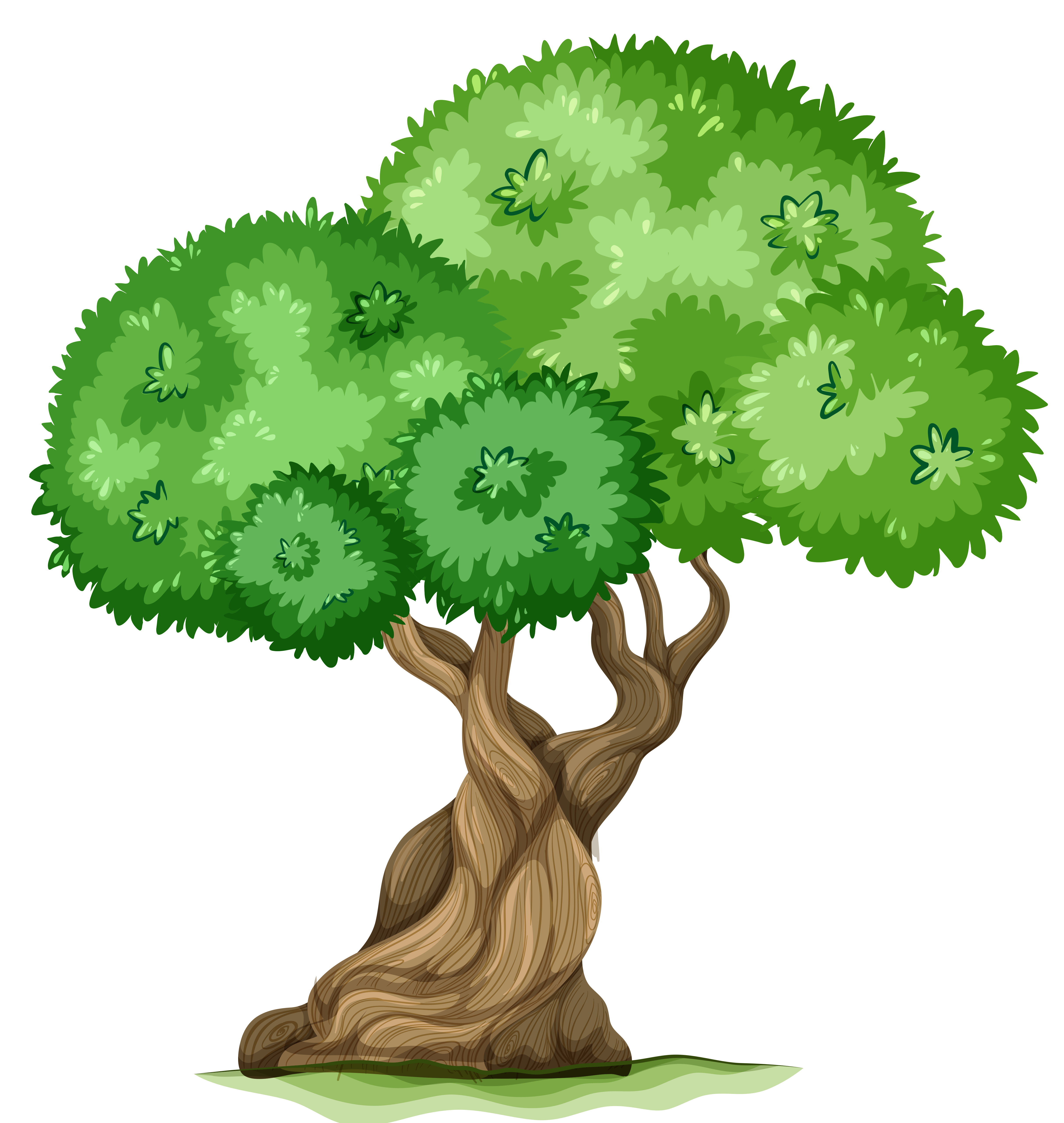 Tree PNG Clipart Picture | Gallery Yopriceville - High-Quality ...