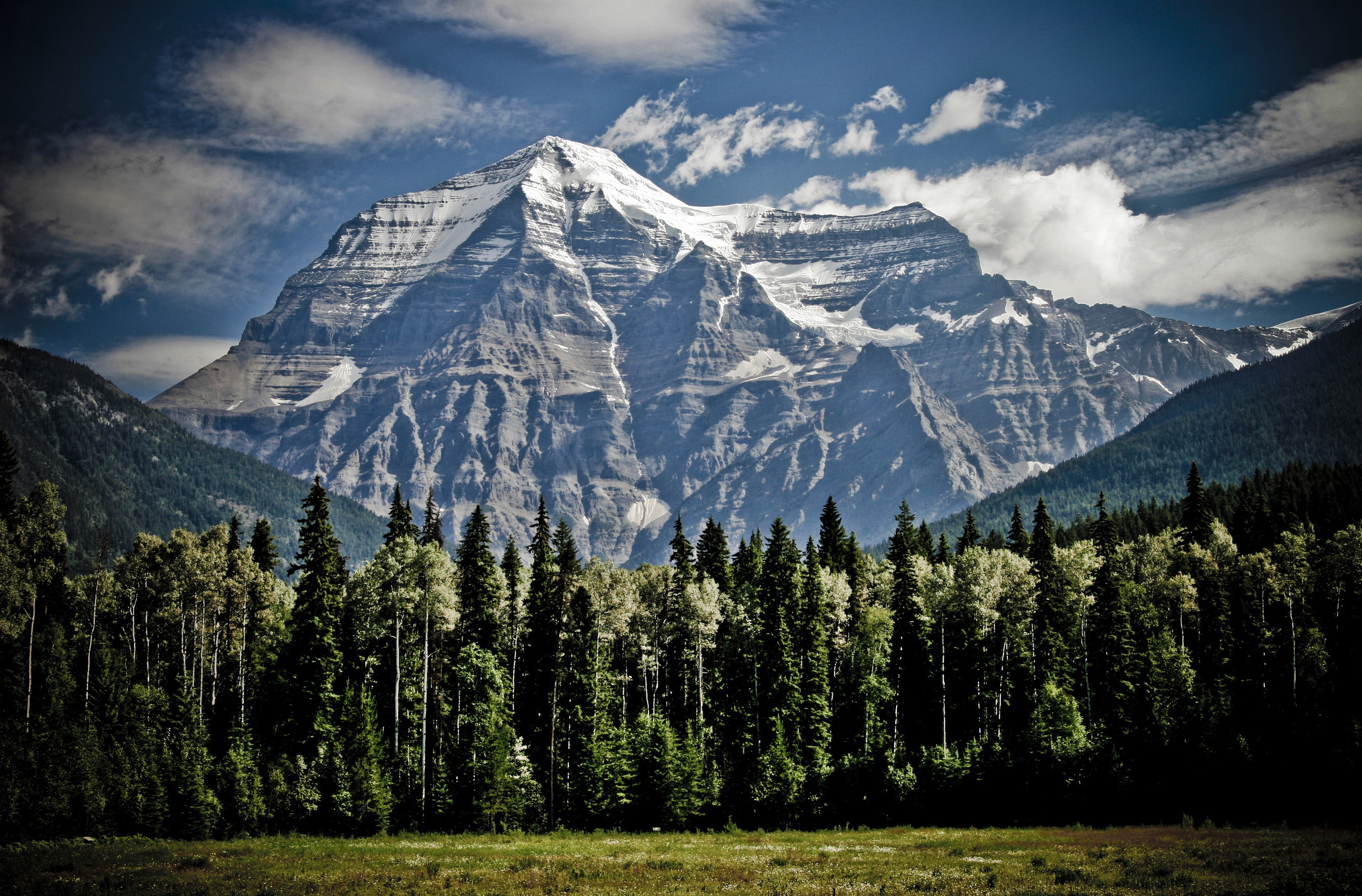 Landscape with mountains with trees in British Columbia, Canada ...