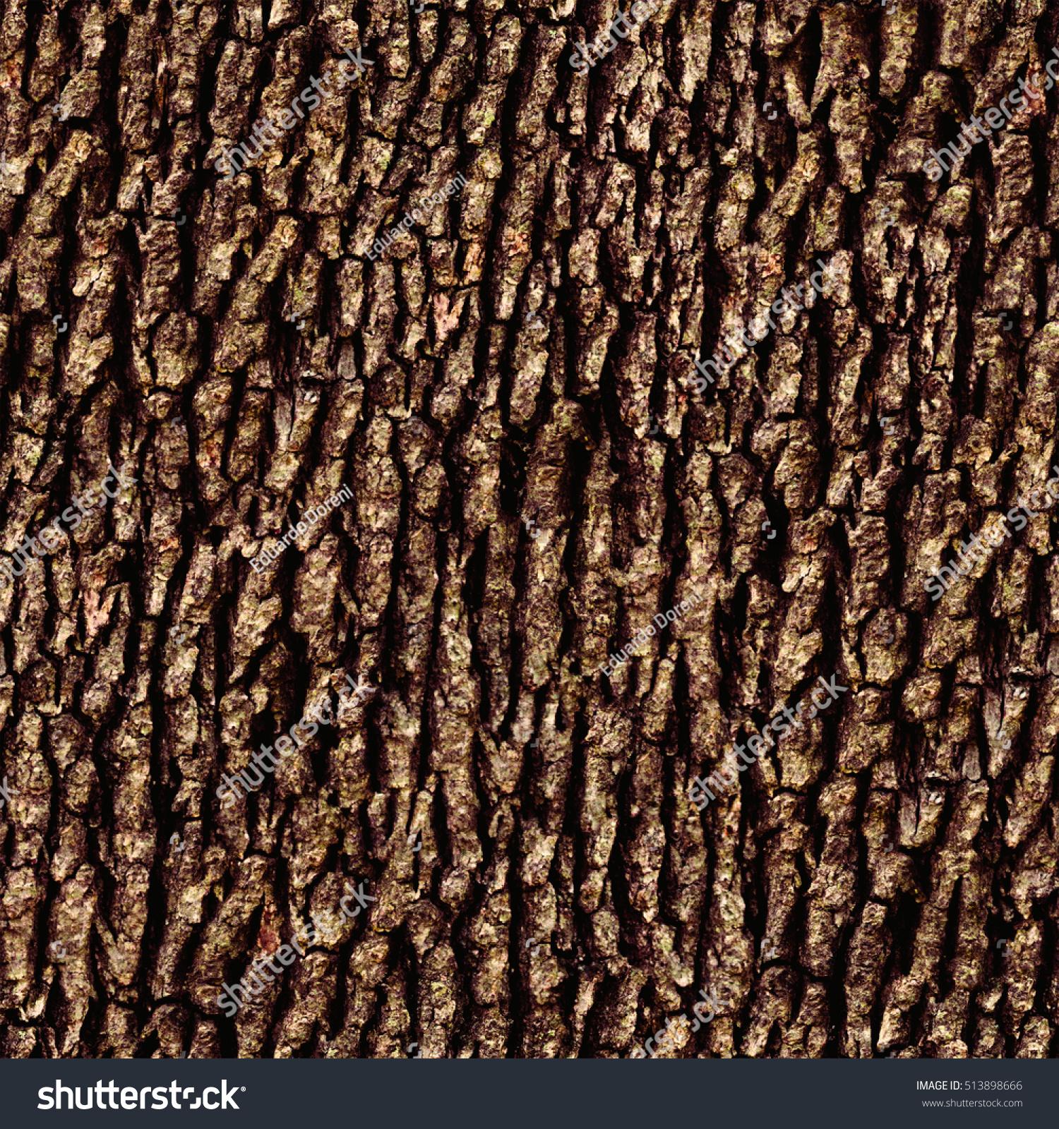 Natural Seamless Tree Bark Textures Stock Illustration 513898666 ...