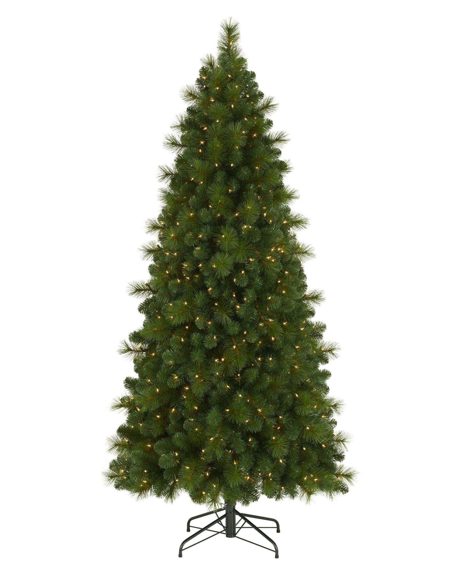 Foxtail Christmas Pine Tree | Treetopia
