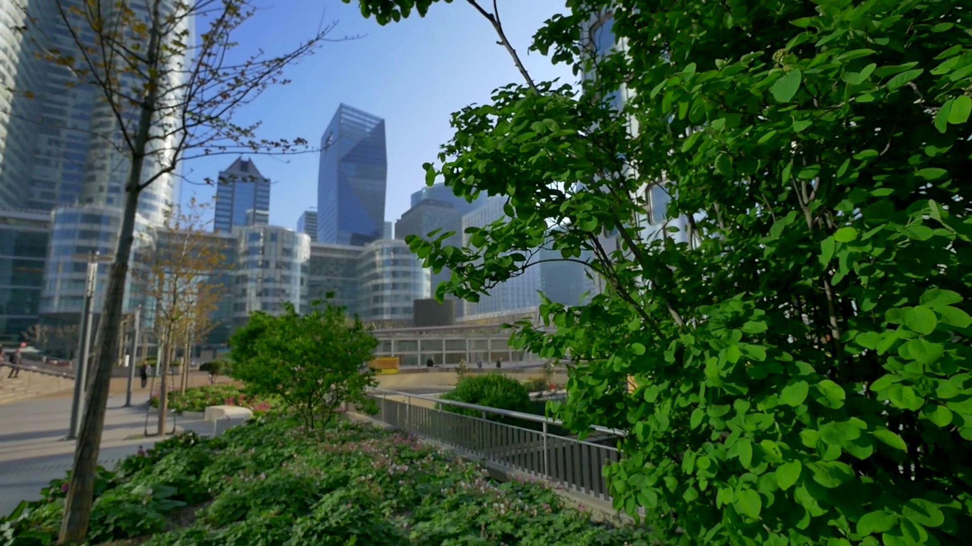 View of high glass buildings through trees and bushes Stock Video ...