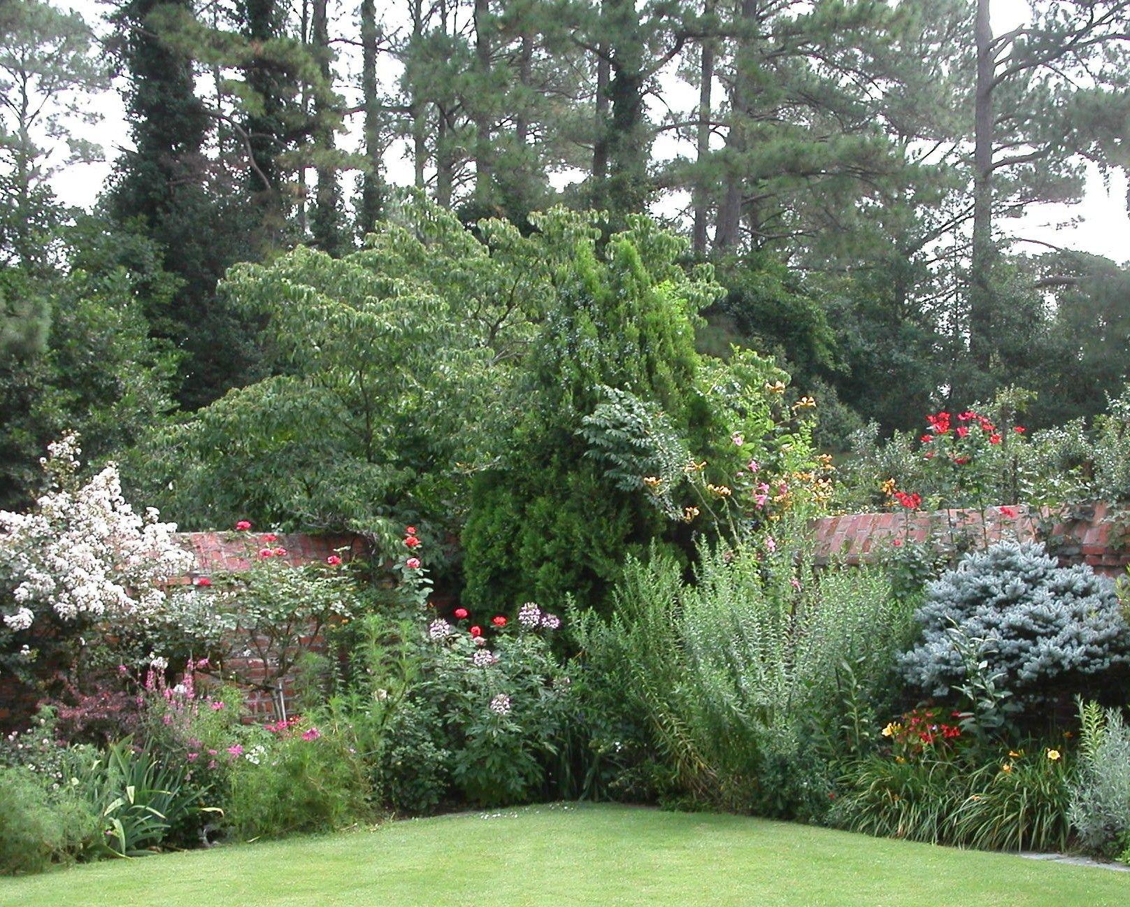 choosing bushes trees shrubs for landscaping | Tree Planting ...